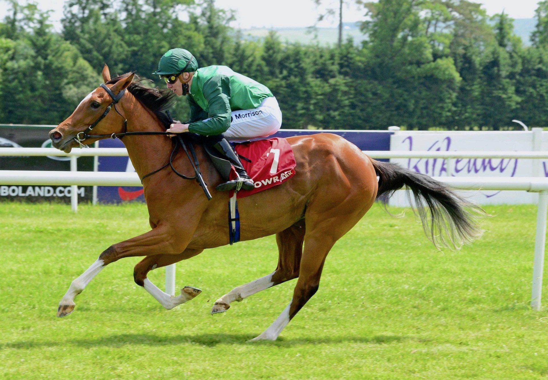 Seisai (Gleneagles) Wins Her Maiden At Gowran Park