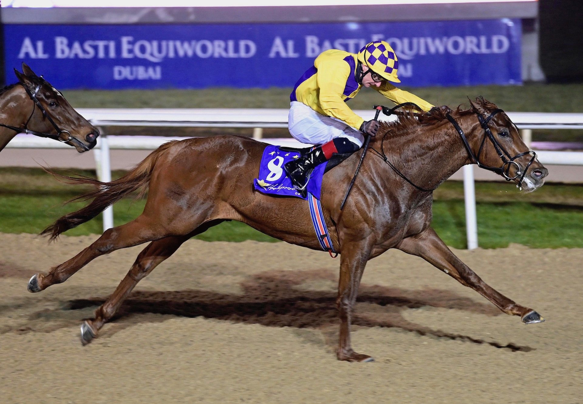 Shackleton Hero (The Gurkha) Wins His Maiden At Dundalk