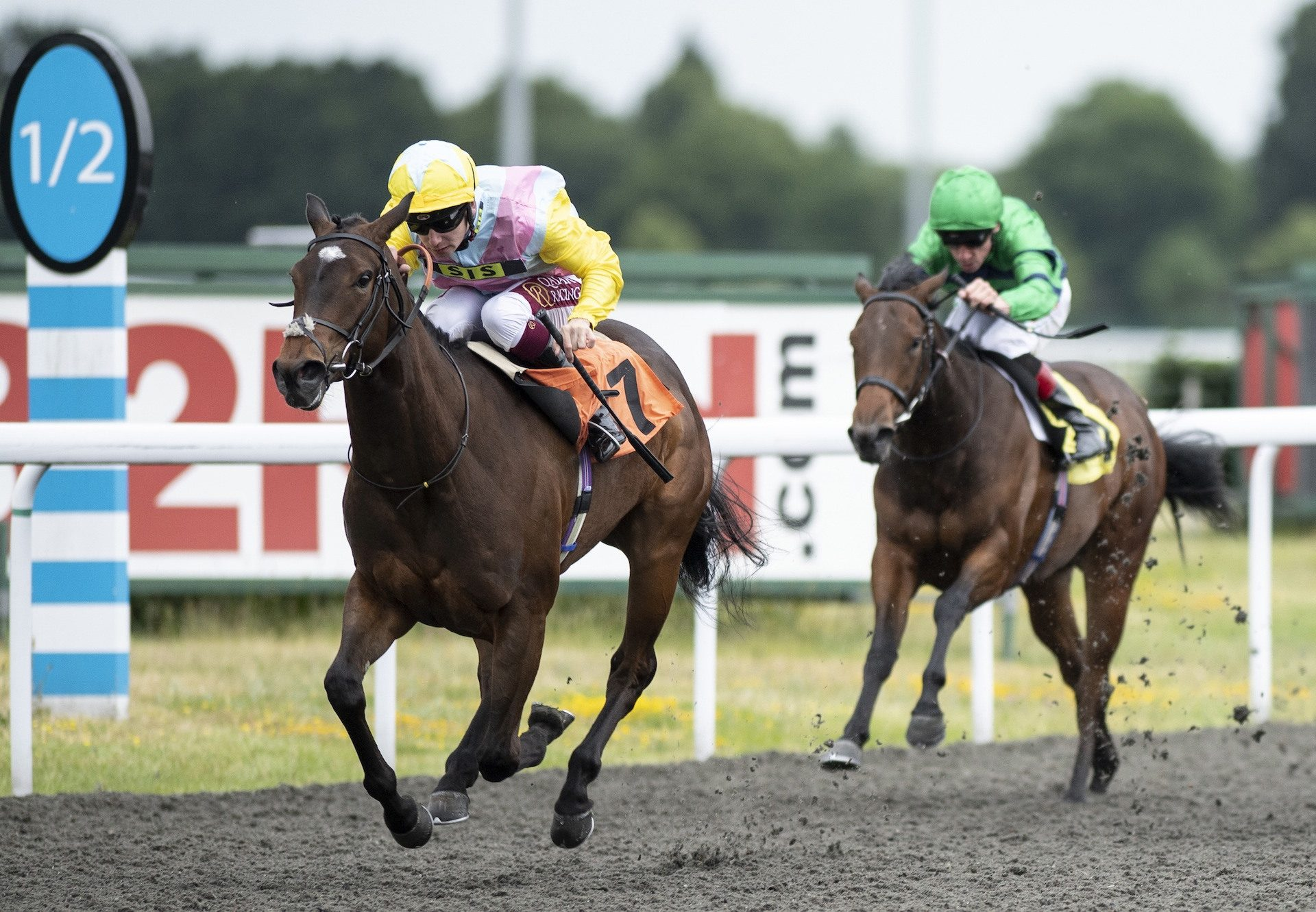 Shadn Becomes The Latest Winner By No Nay Never