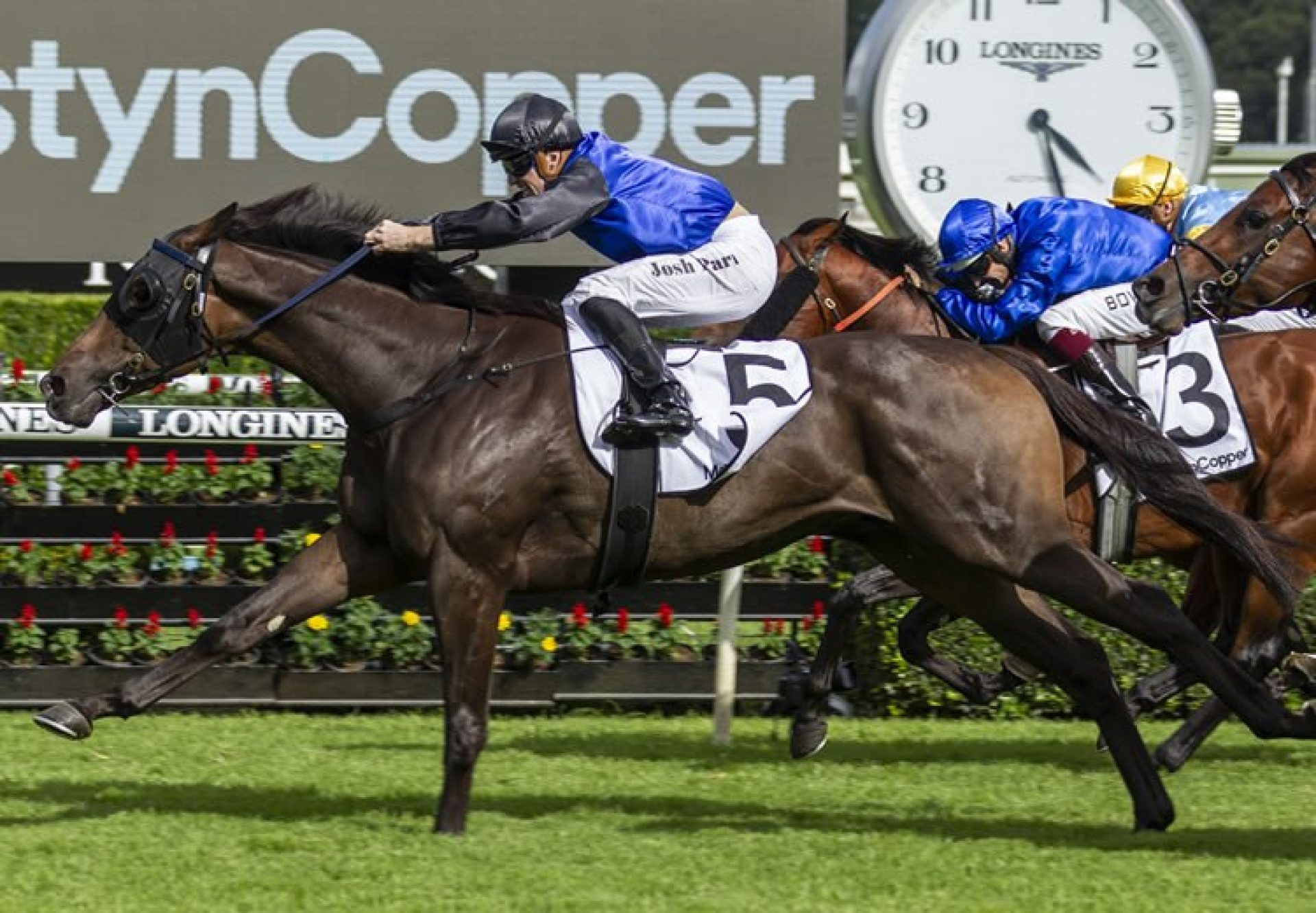 Shadow Hero (Pierro) winning the Gr.1 Randwick Guineas