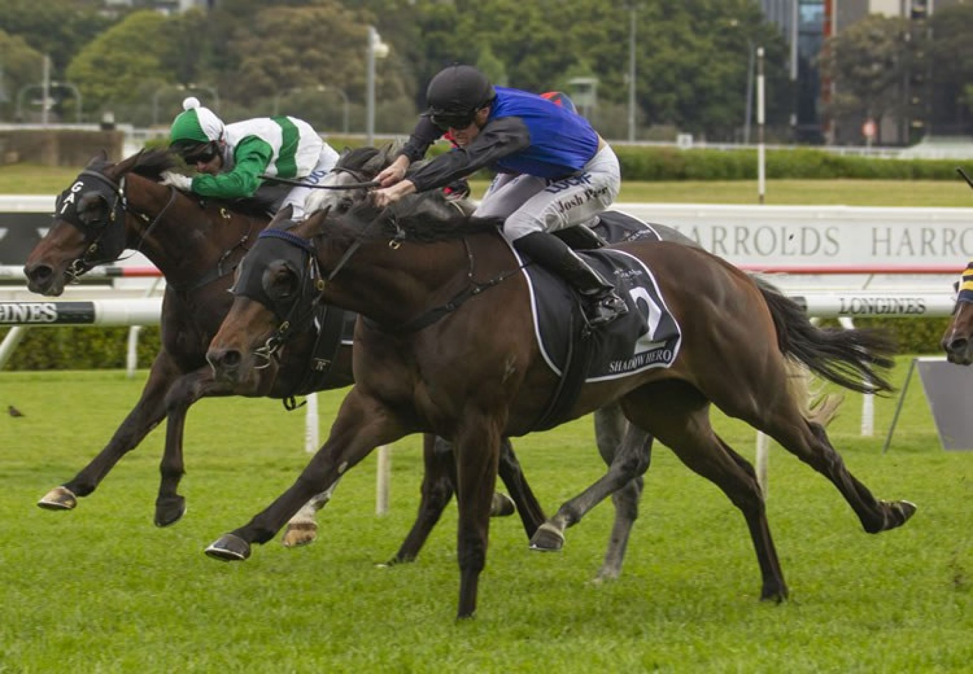 Shadow Hero (Pierro) winning the Gr.1 Spring Champion Stakes