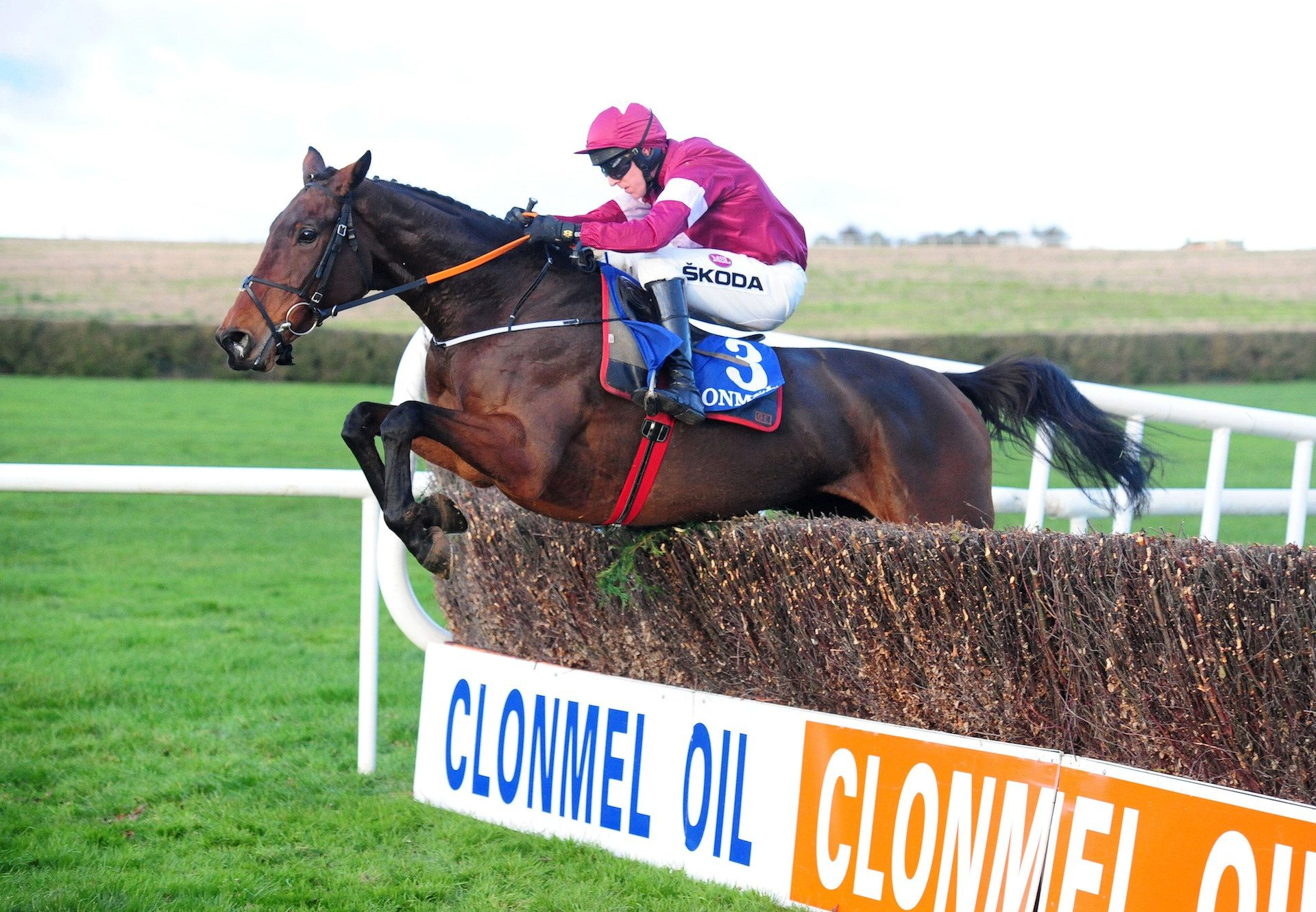 Shattered Love (Yeats) Wins The Listed Mares Chase At Clonmel