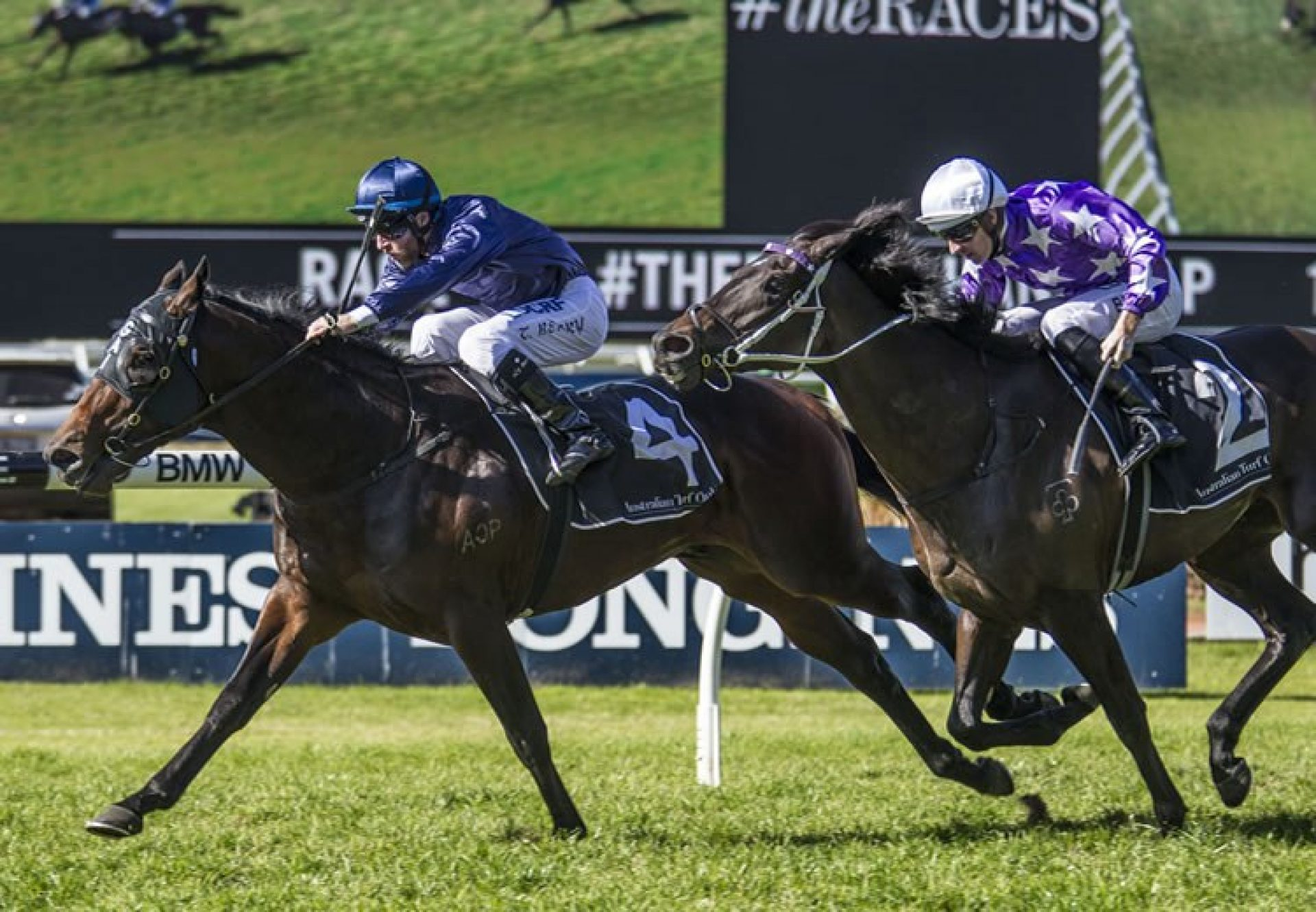 Siege Of Quebec (Fastnet Rock) winning at Rosehill