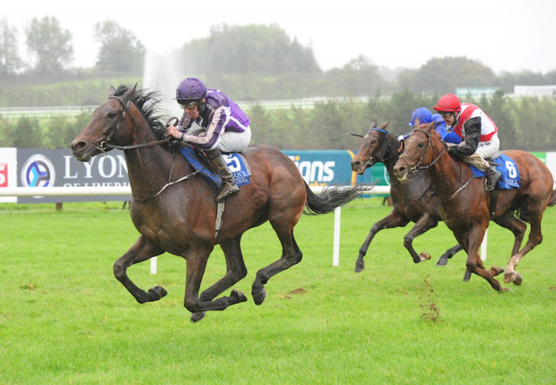 Sir Erec (Camelot) winning the Listed Martin Moloney Stakes at Limerick