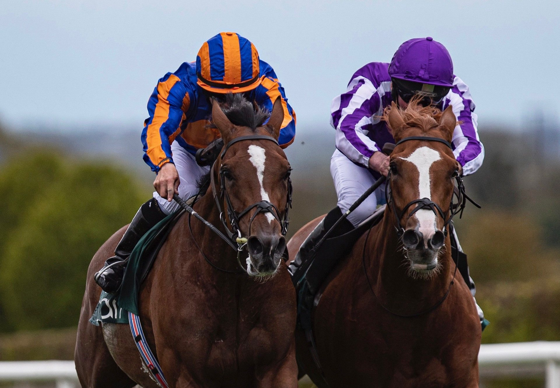 Sir Lucan (Camelot) Wins The Listed Yeats Stakes At Navan