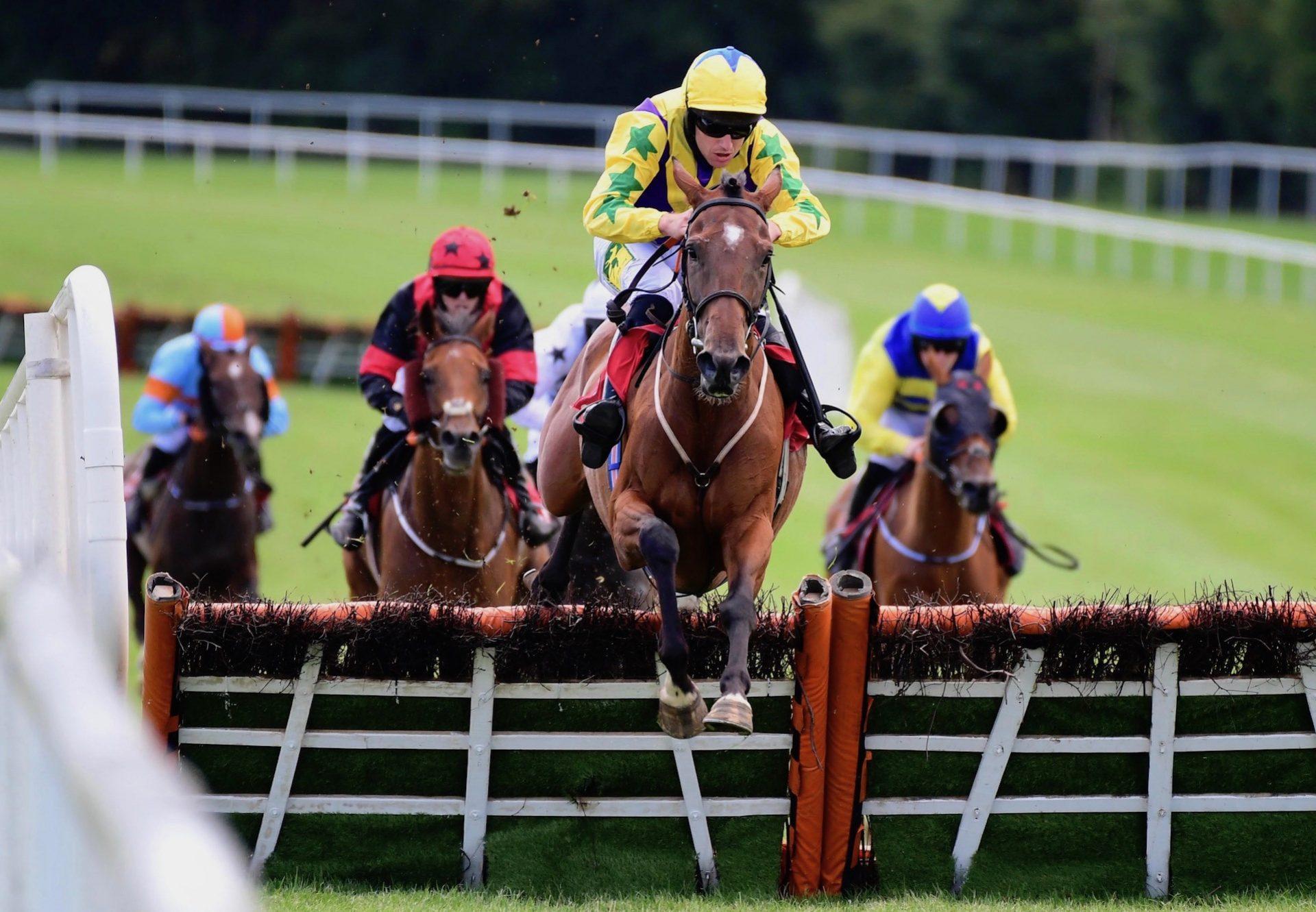 Skyace (Westerner) Wins At Gowran