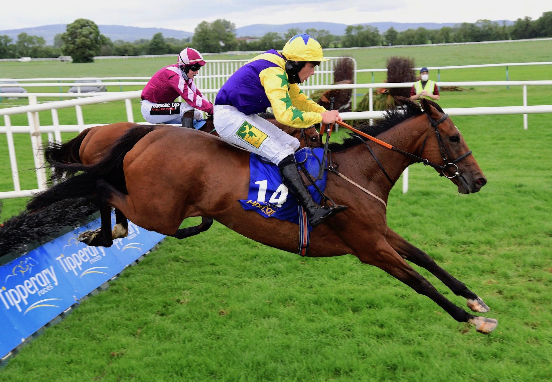 Skyace (Westerner) Wins Maiden Hurdle At Tipperary