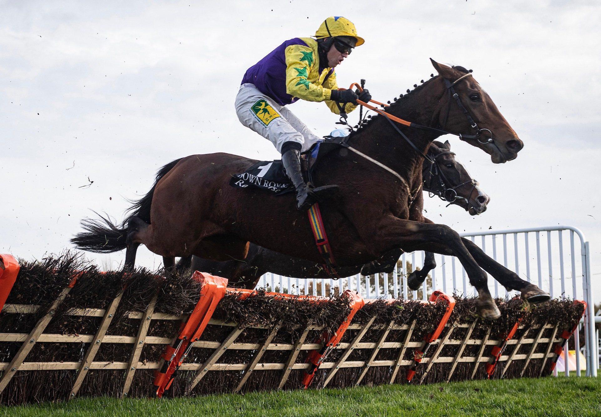 Skyace (Westerner) Wins The Grade 3 Mares Novice Hurdle at Down Royal