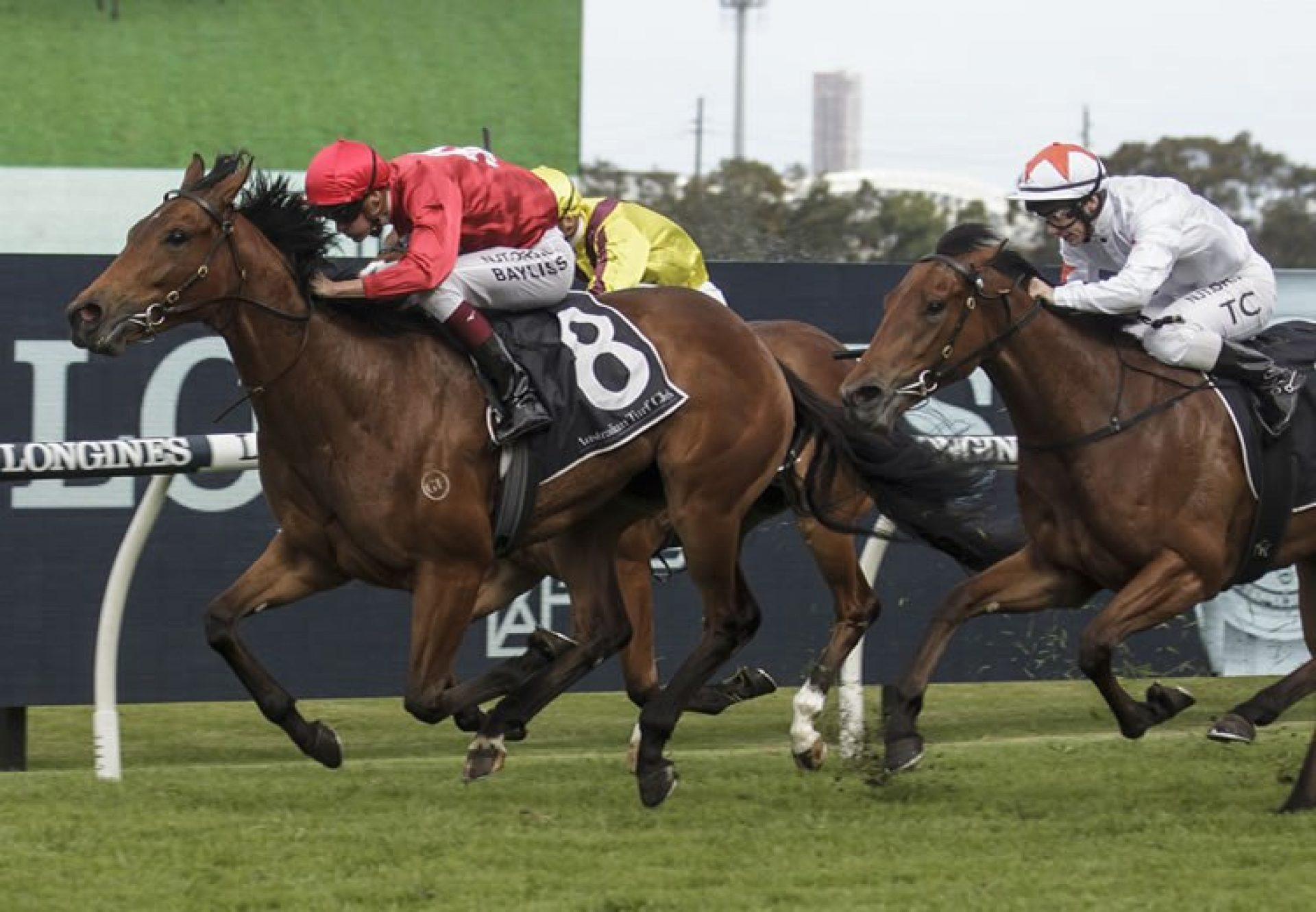 Sneaky Five (Fastnet Rock) wins the Golden Gift at Rosehill