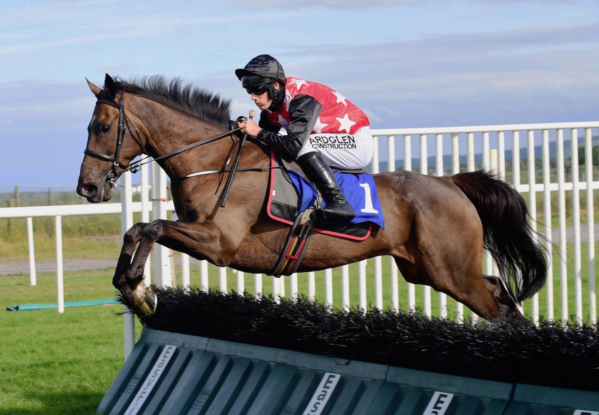 Castlebawn West Wins The Paddy Power Chase At Leopardstown 1