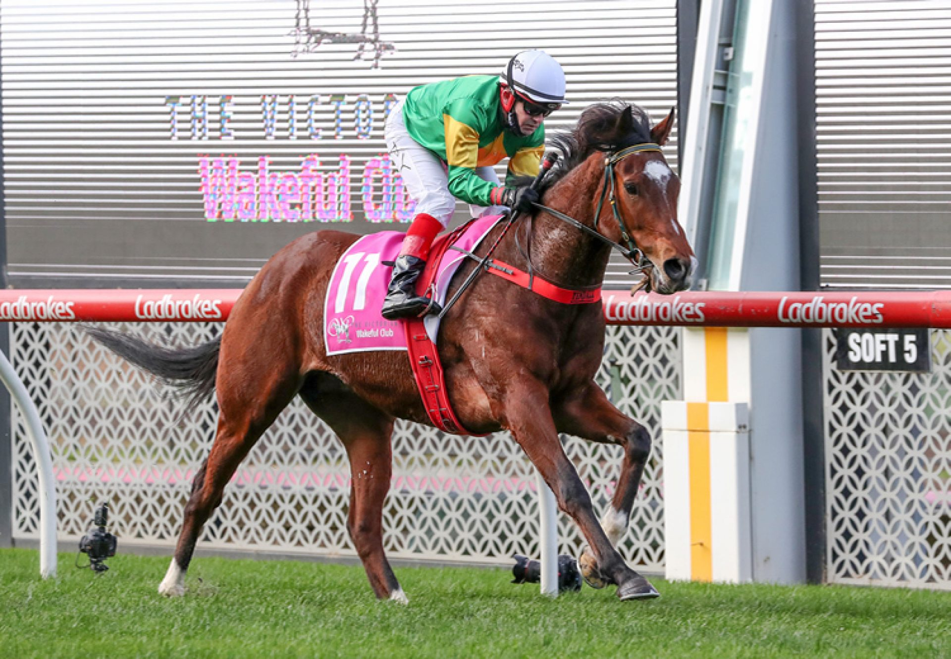 So You Assume (So You Think) winning at Moonee Valley