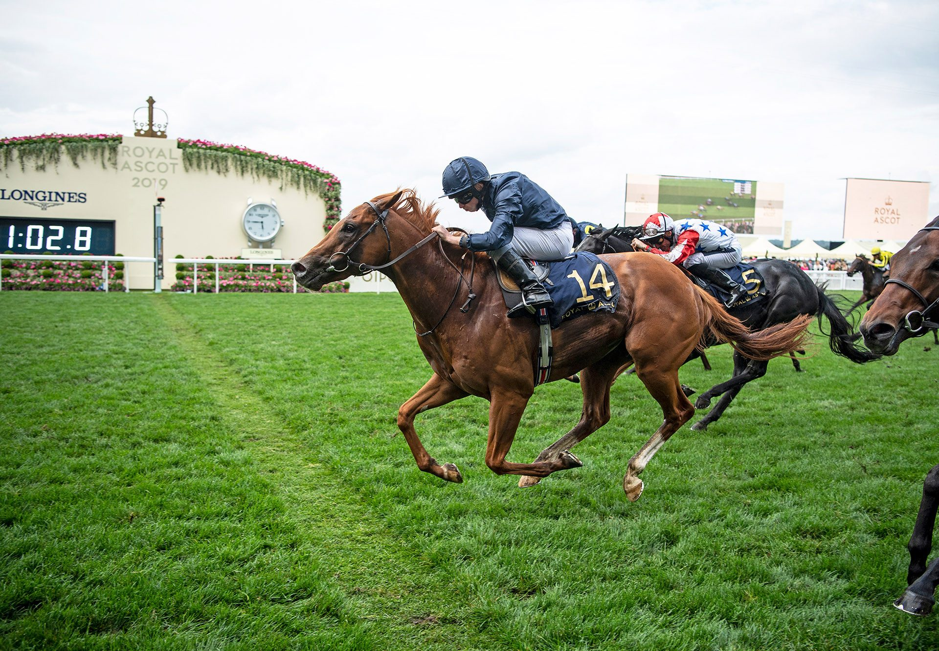 Southern Hills (Gleneagles) winning the Windsor Castle at Royal Ascot
