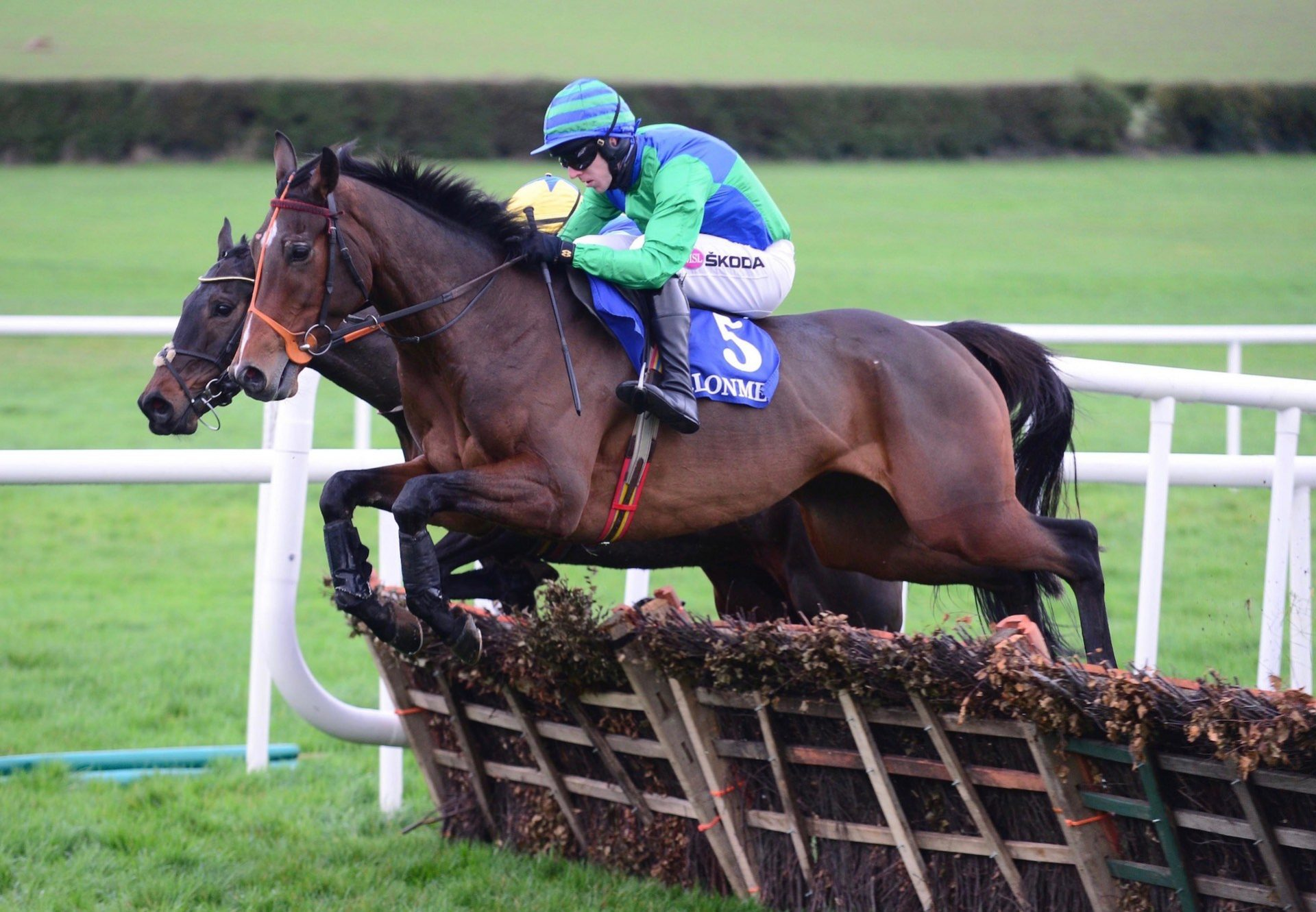 Stand Off (Milan) Wins The Maiden Hurdle At Clonmel