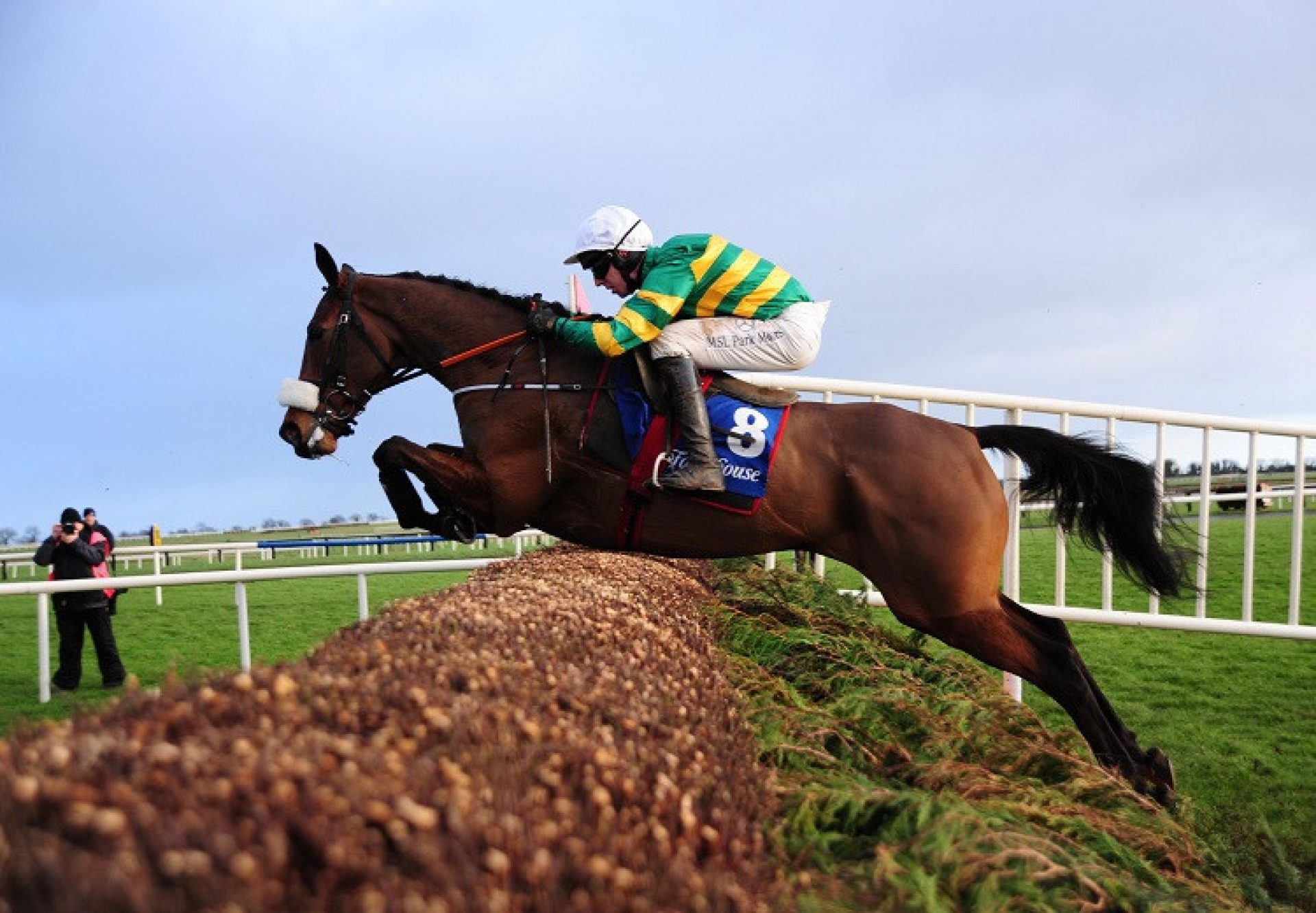 Sutton Place (Mahler) winning a beginners chase at Fairyhouse