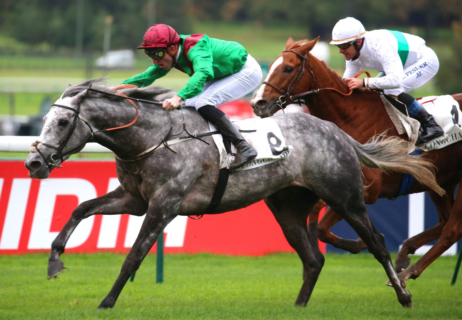 Technician (Mastercraftsman) wins the Gr.1 Prix Royal Oak at Longchamp