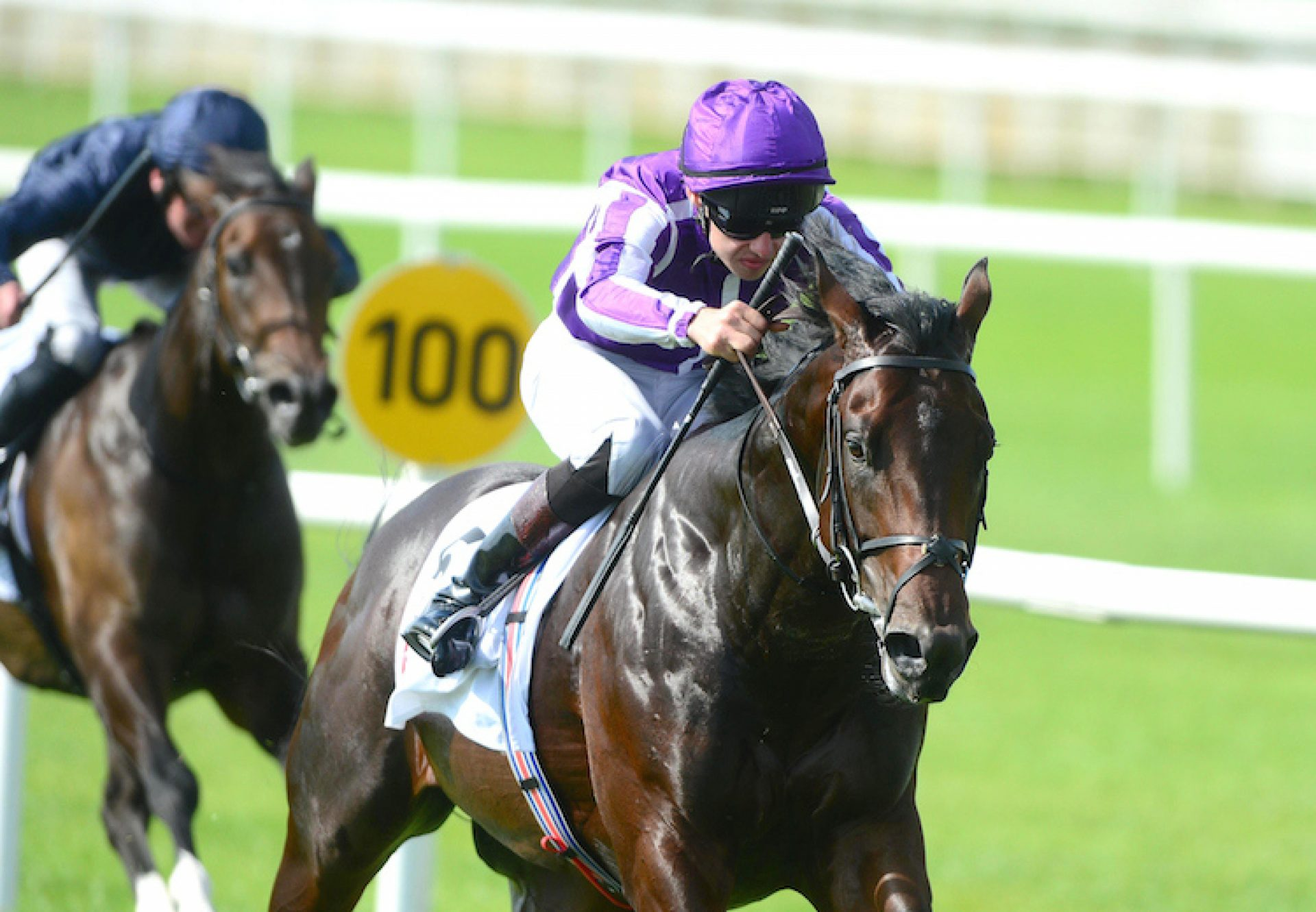 Ten Sovereigns (No Nay Never) winning the G3 Round Tower Stakes at the Curragh