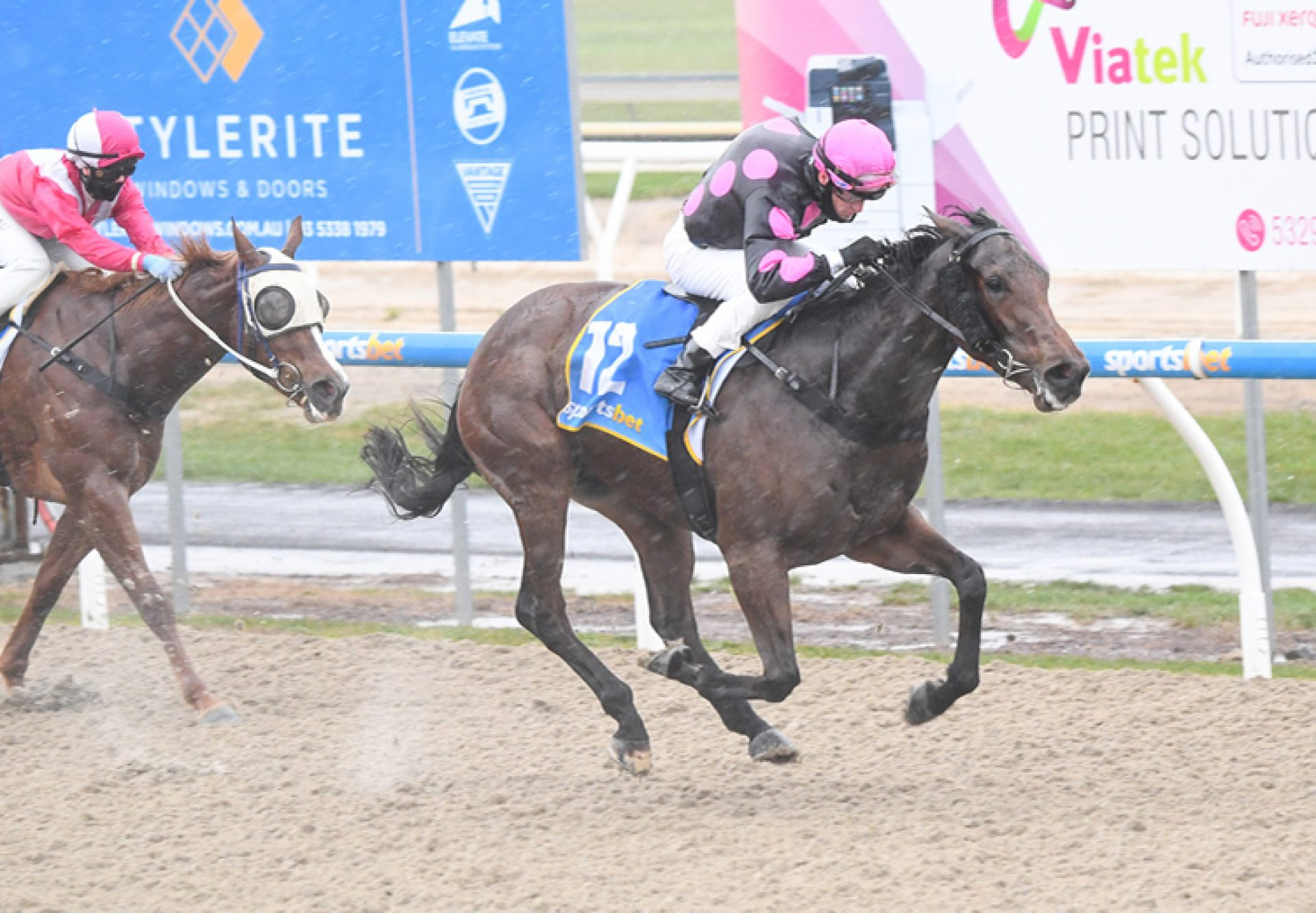 Testa Rock (Fastnet Rock) winning at Ballarat