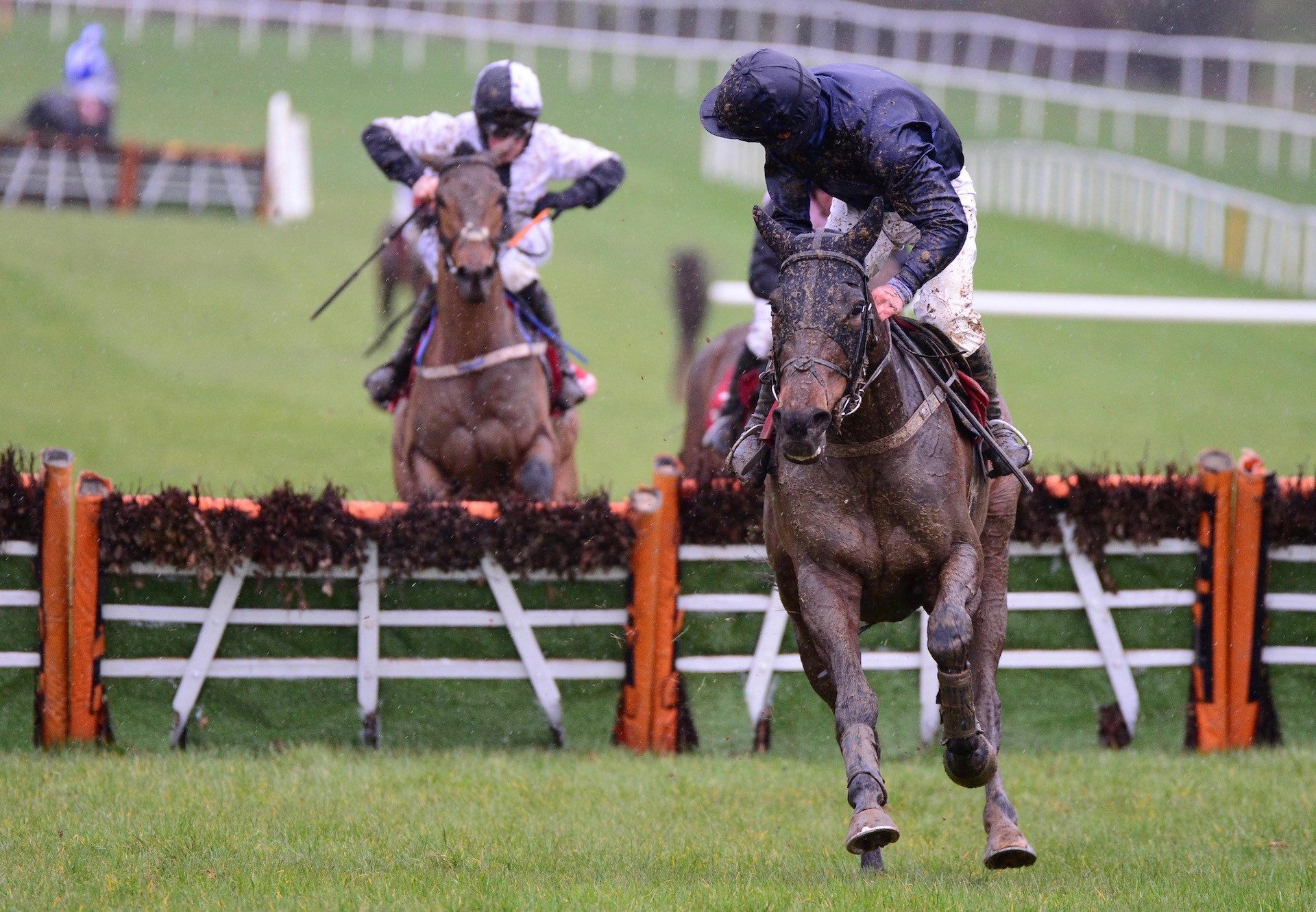 That'll Be The Day (Westerner) Impresses At Gowran Park