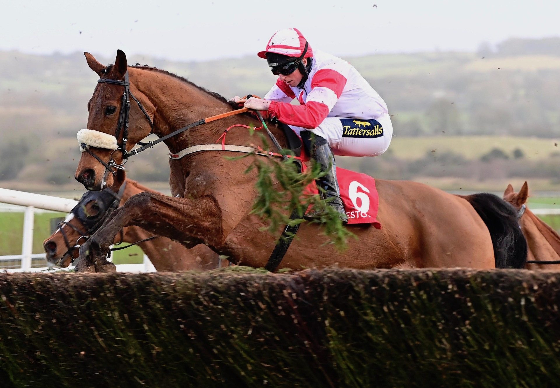 The Big Dog (Mahler) Wins The Punchestown Grand National Trial