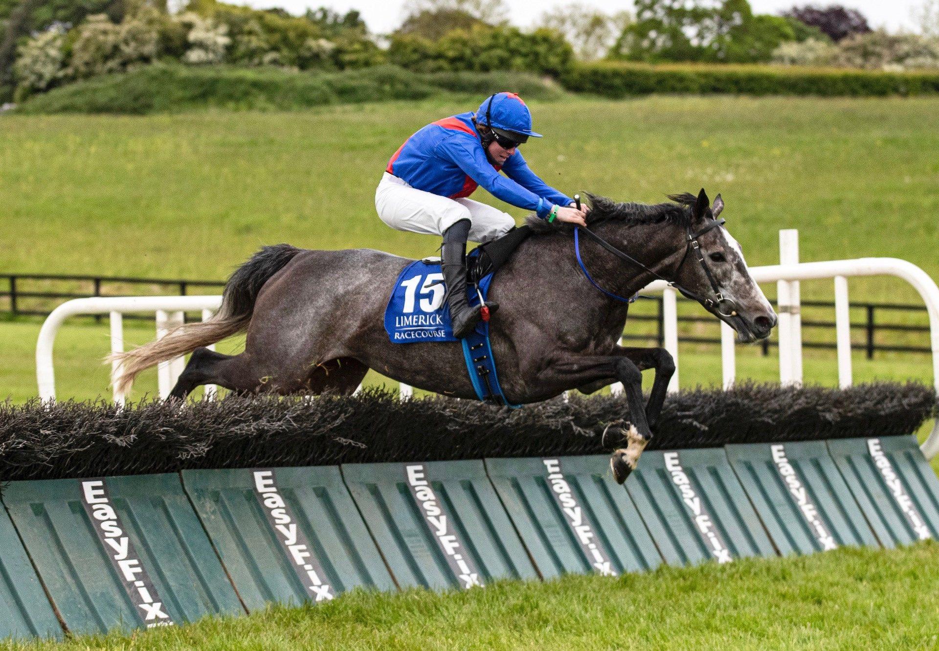 The Getaway Star (Getaway) Wins The Mares Maiden Hurdle At Limerick
