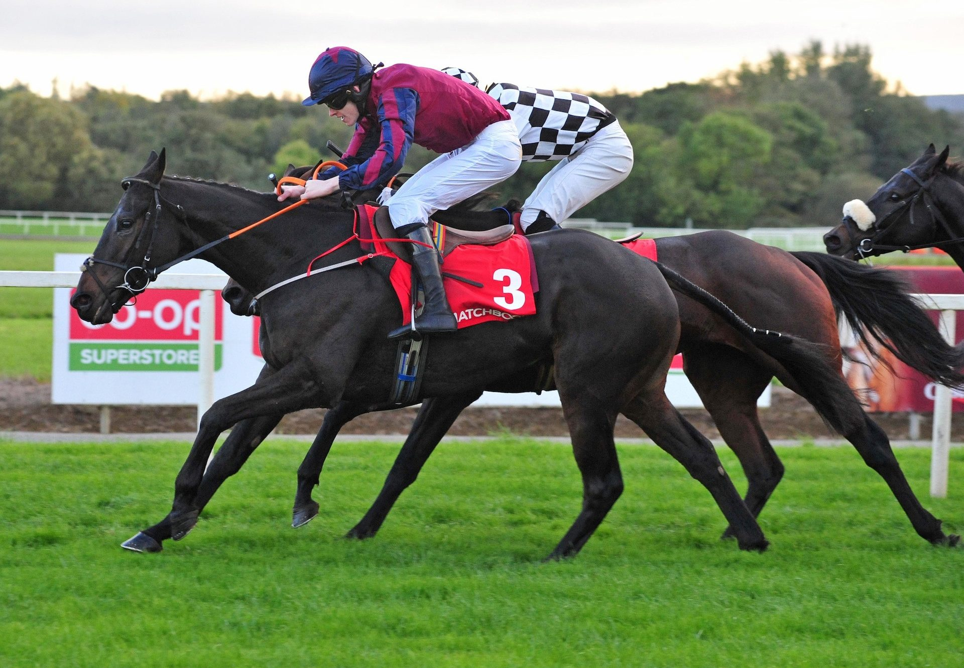 The Little Yank (Westerner) winning a bumper at Cork