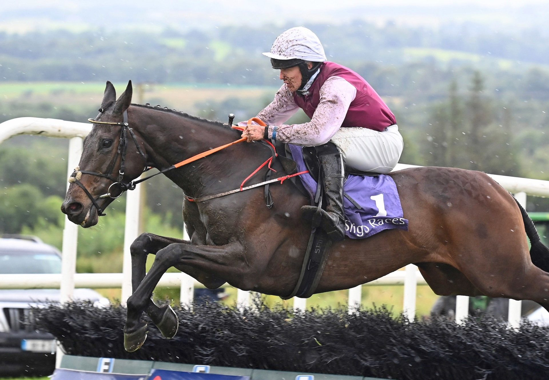 The Little Yank (Westerner) Wins The Rated Novice Hurdle At Sligo