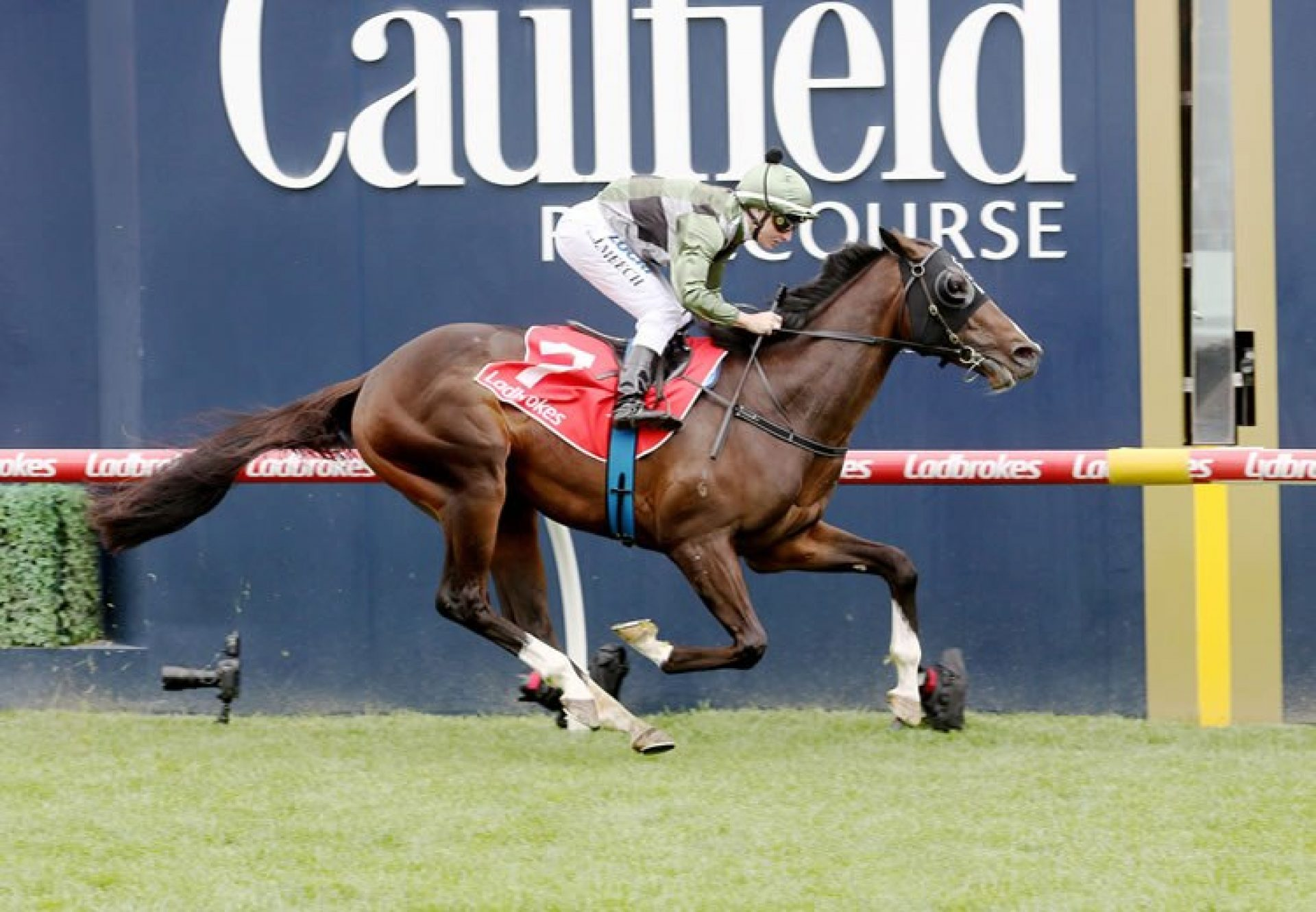 Thought Of That (So You Think) winning the Gr.3 MRC Ladbrokes Classic at Caulfield