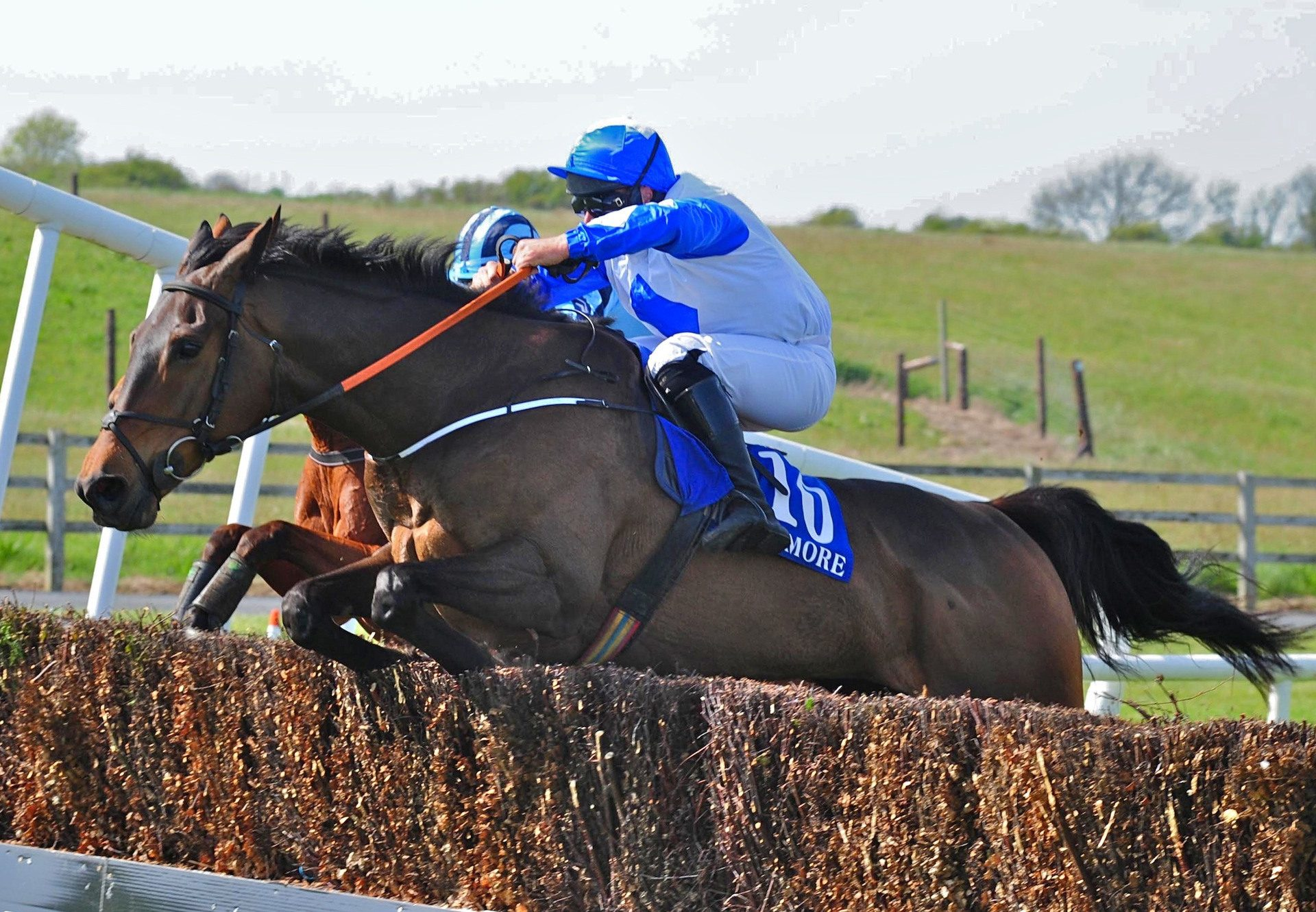 Tiantu (Getaway) Wins The Beginners Chase At Tramore