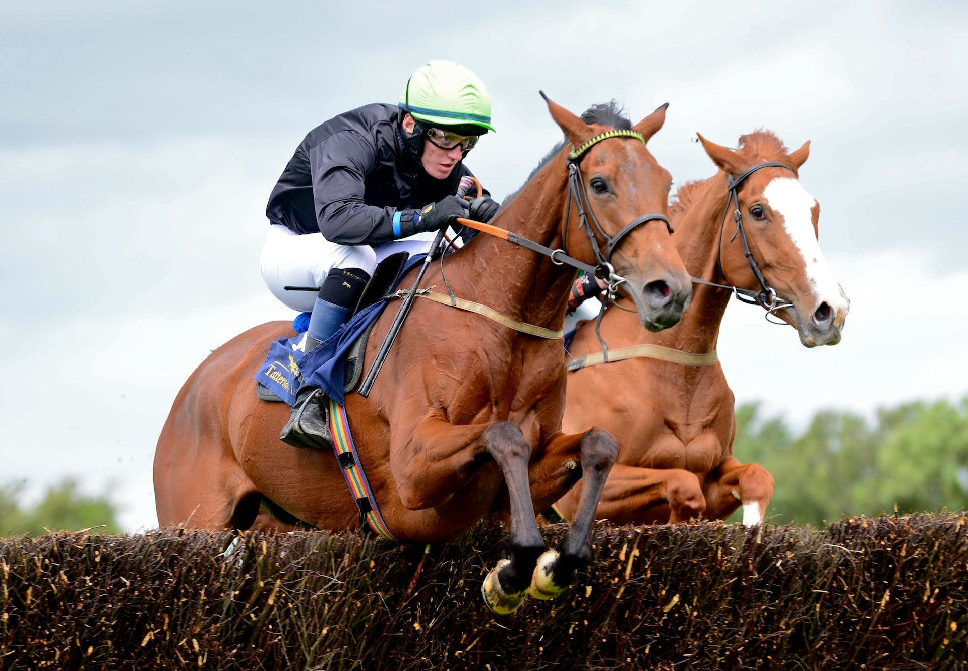 Ticket To LA (Westerner) Wins At Ballingarry