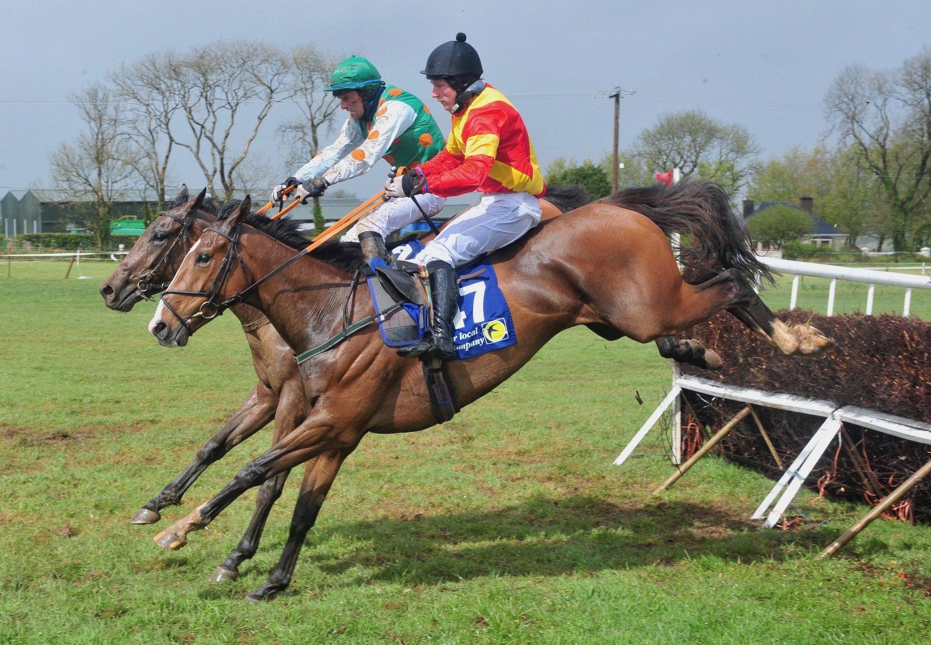 Tigers Roar (Leading Light) Wins The 5 YO Geldings Maiden At Dromahane