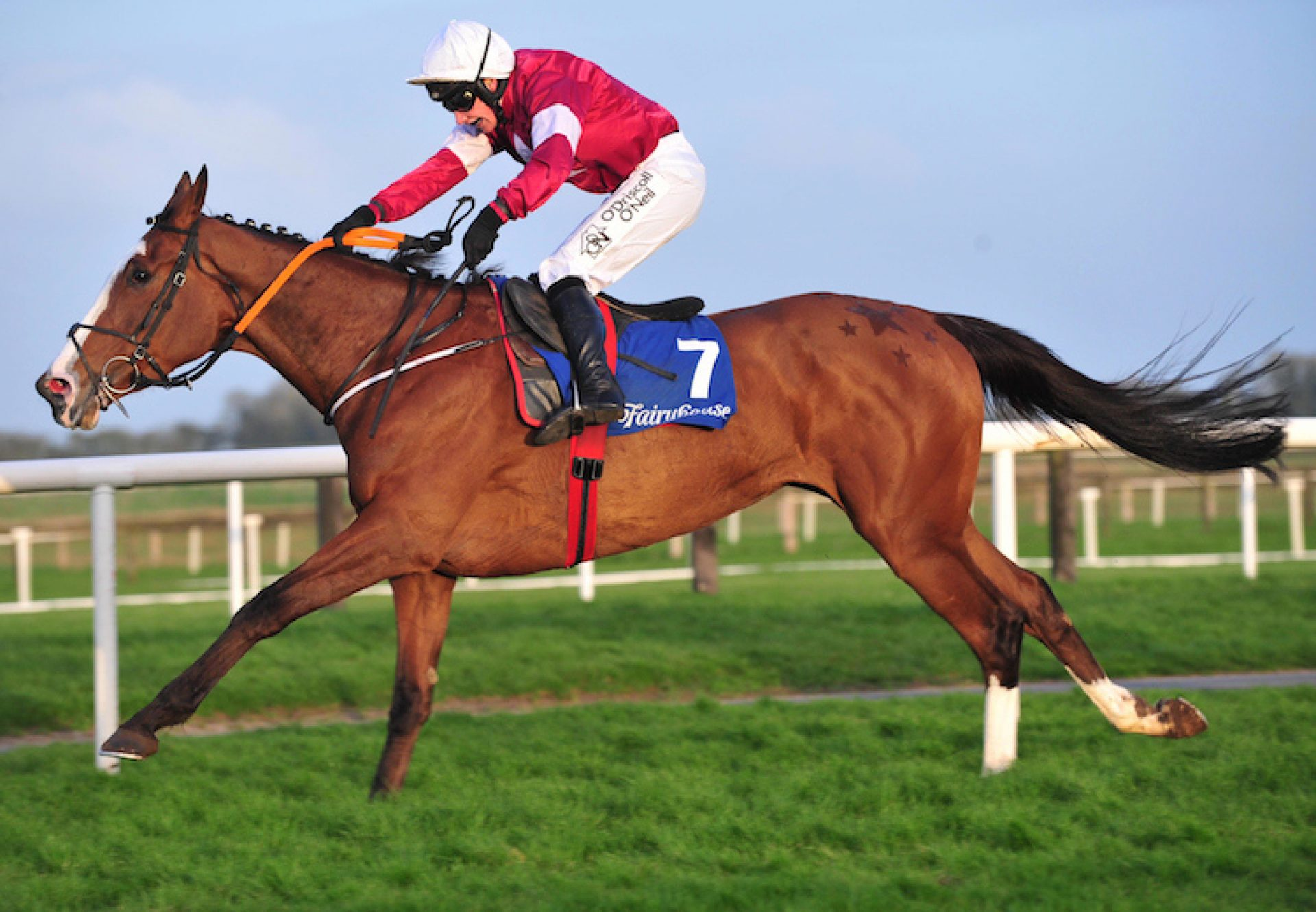 Tintangle (Yeats) winning a Listed Bumper at Fairyhouse
