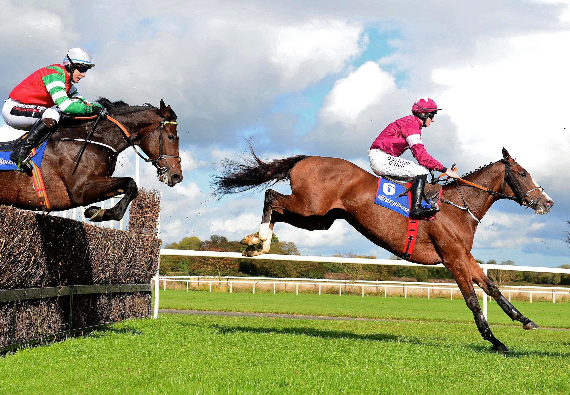 Tintangle (Yeats) winning a beginners chase at Fairyhouse