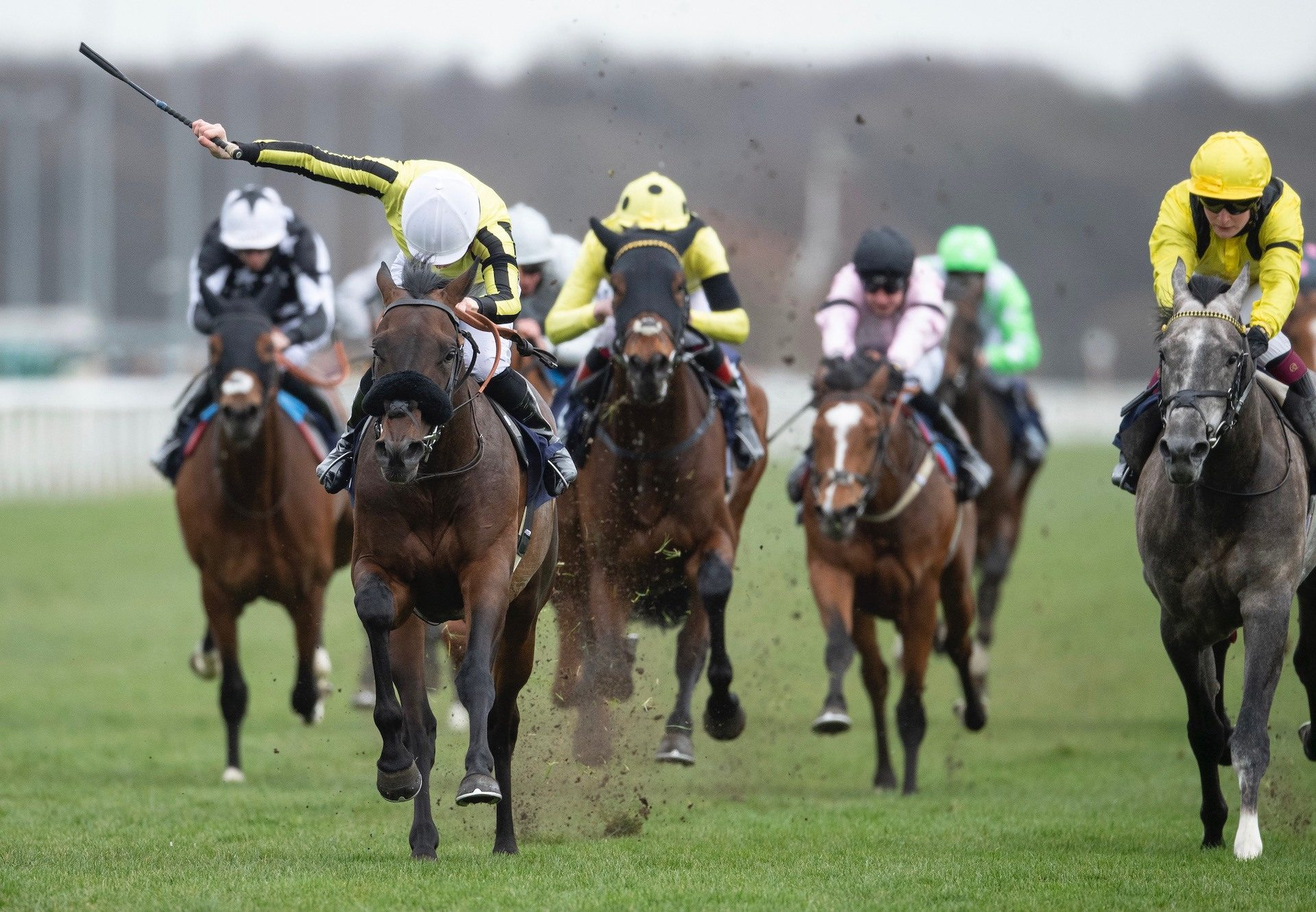 Too Friendly (Camelot) Wins His Maiden At Doncaster