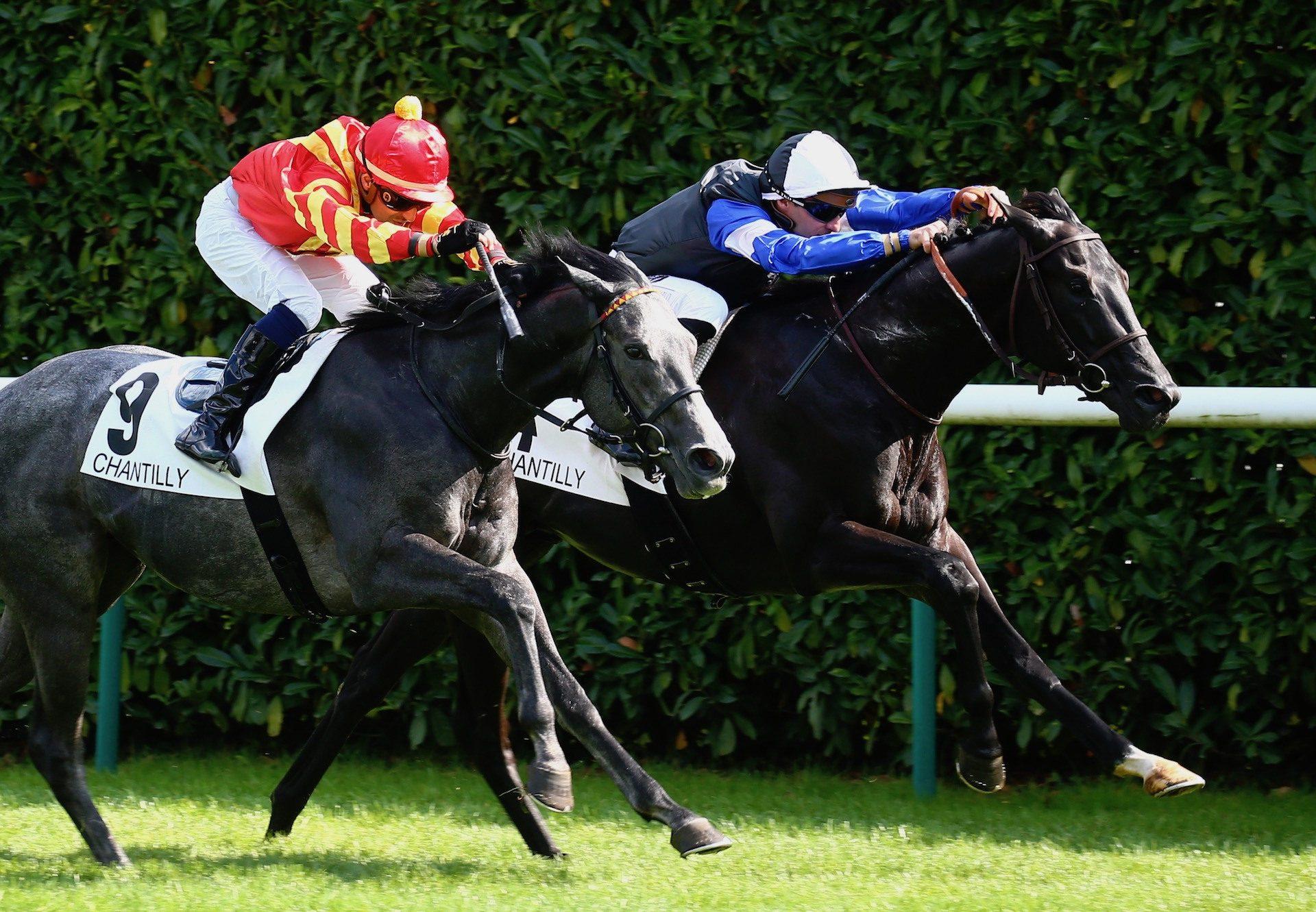 Topgear (Wootton Bassett) Lands The Group 3 Prix Eclipse at Chantilly