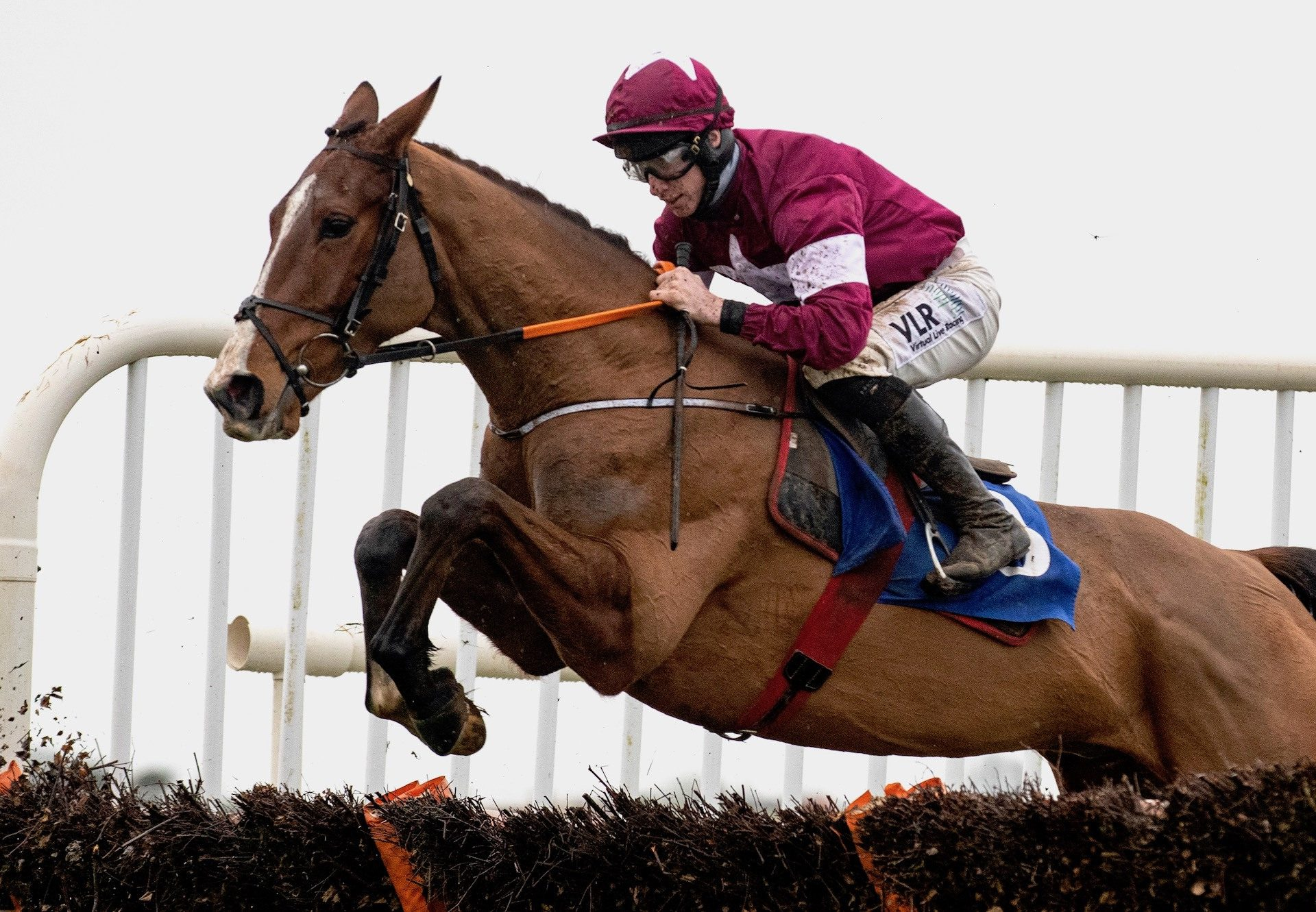 Torygraph (Mahler) Secures Back To Back Wins At Thurles
