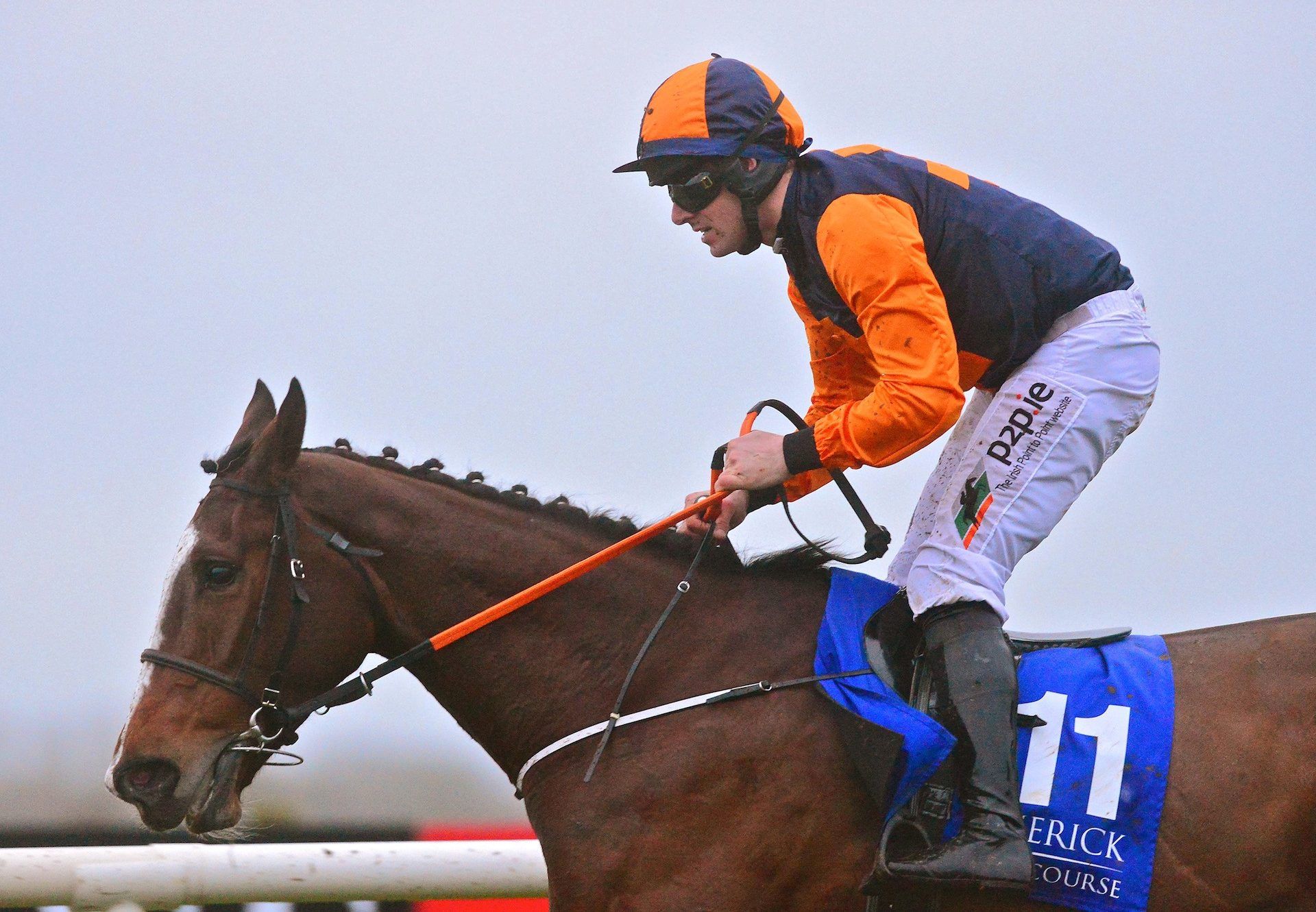 Tucanae (Yeats) Wins Her Bumper At Limerick