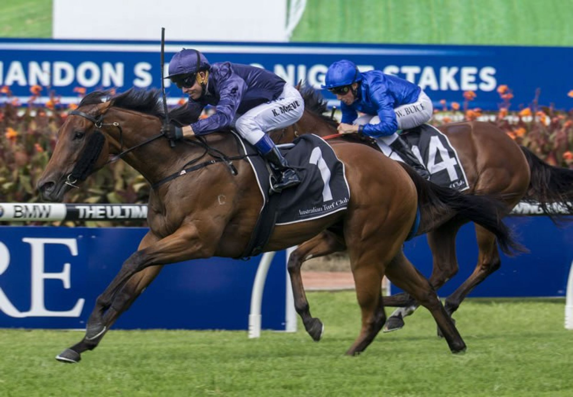 Tulip (Pierro) winning the Magic Night Stakes at Rosehill