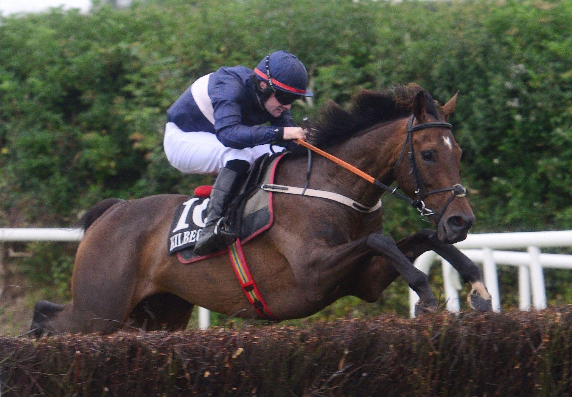 Turbo (Getaway) Wins Beginners Chase At Kilbeggan
