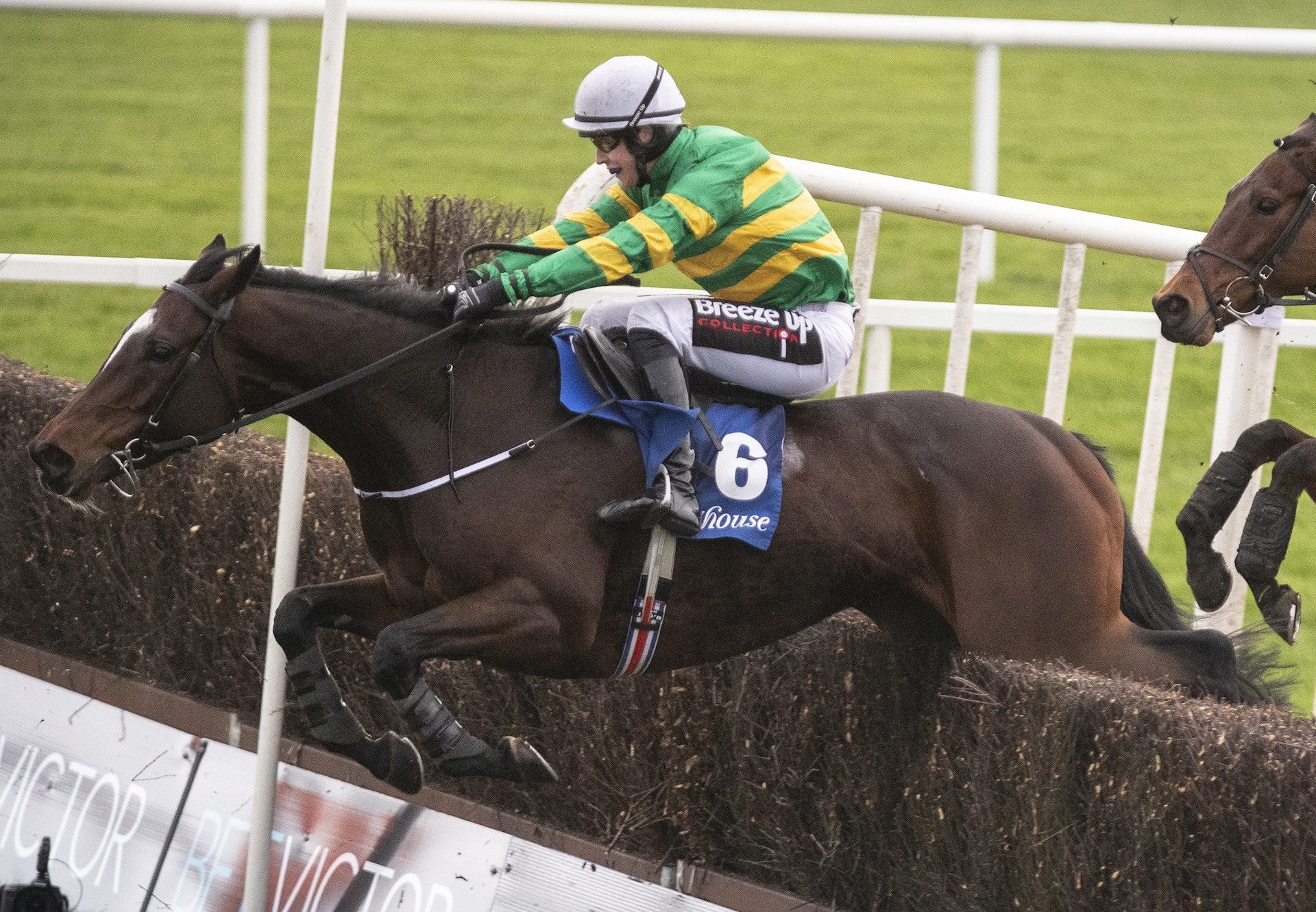 Uisce Beatha (Yeats) Completes A Double For Yeats At Fairyhouse