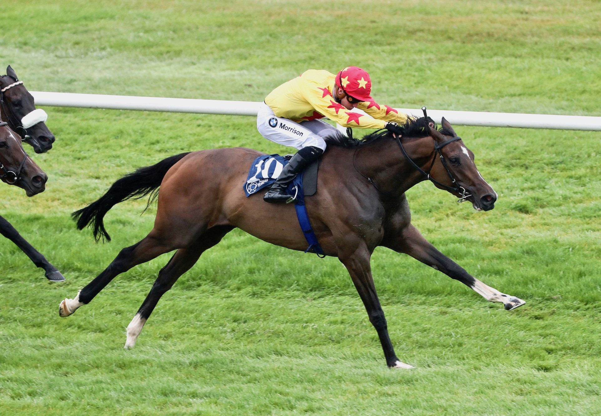 Ulster Blackwater (Camelot) Wins Her Maiden At Naas