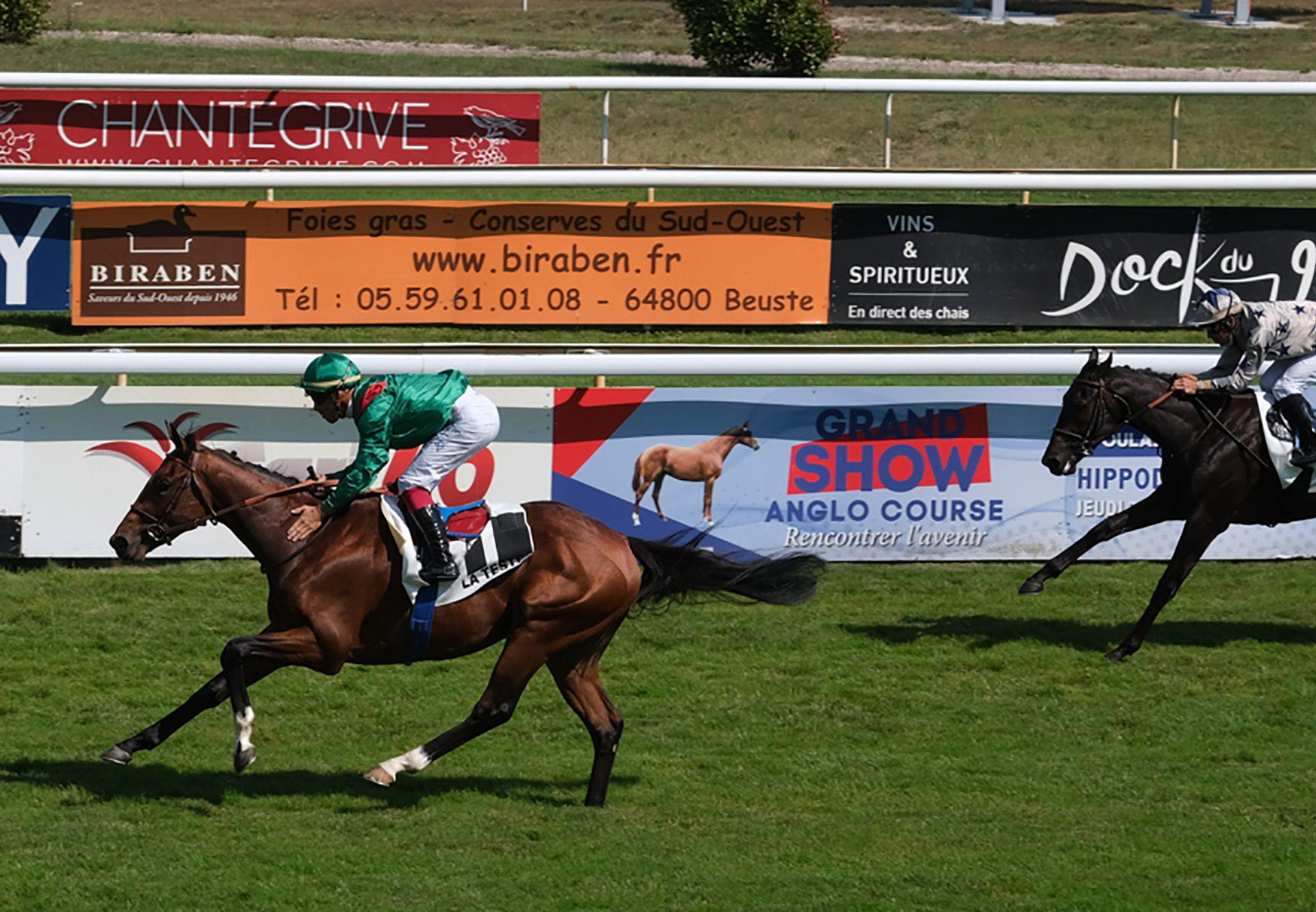O'President (Fastnet Rock) wins the Gr.2 Skyline Stakes at Randwick