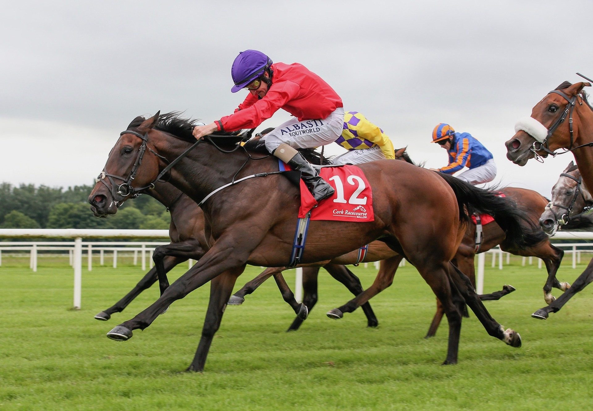Valeria Messalina (Holy Roman Emperor) Wins The Brownstown Stakes at Cork