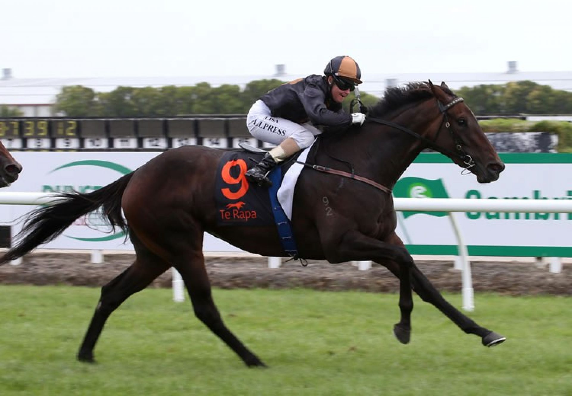 Valley Girl (Mastercraftsman) winning the G1 Herbie Dyke Stakes at Te Rapa