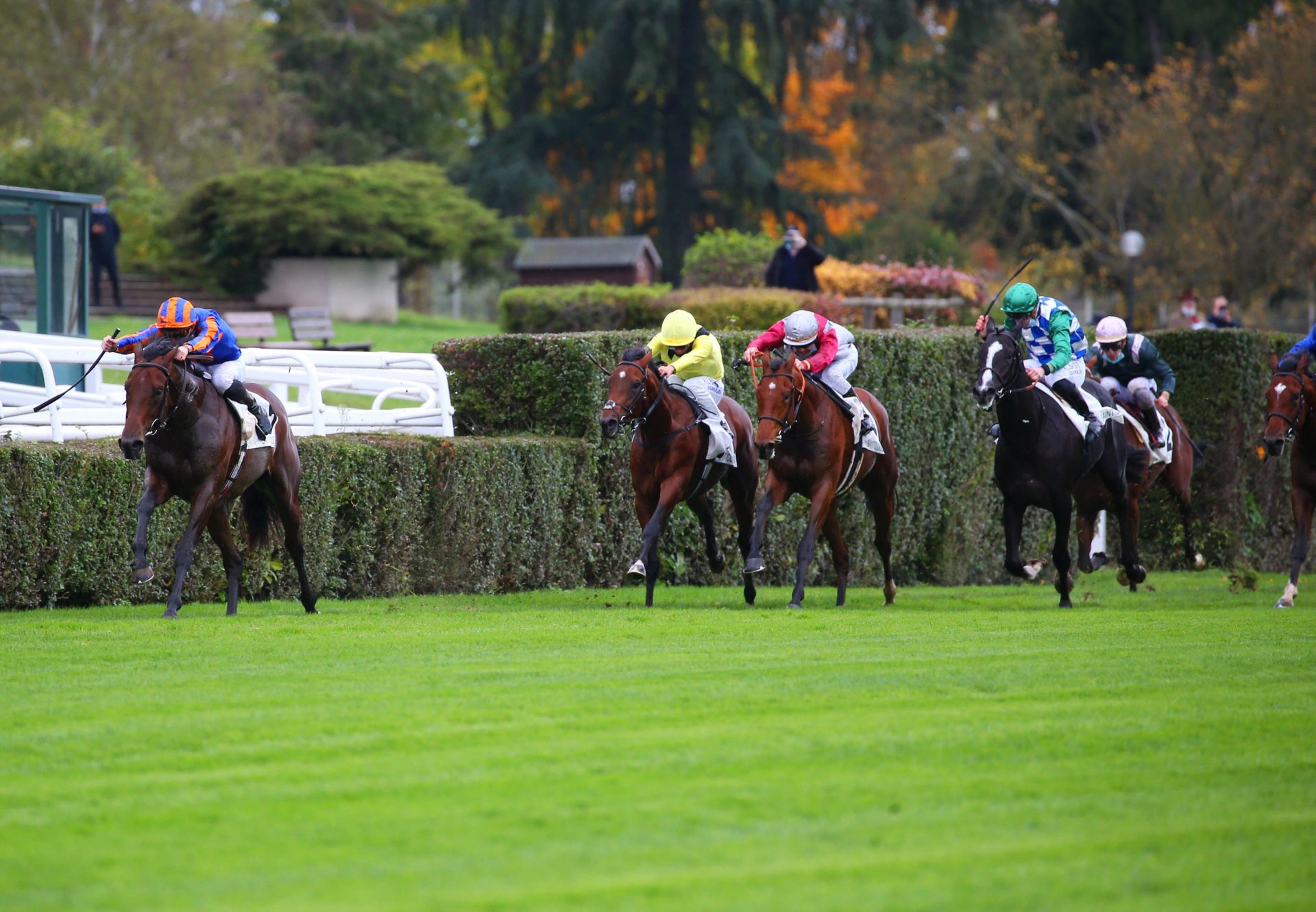 Van Gogh (American Pharoah) Wins Gr.1 Criterium International at Saint-Cloud