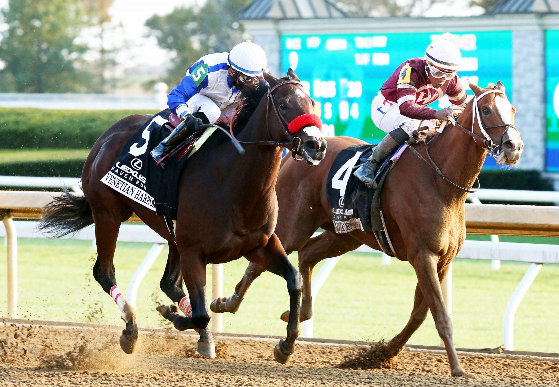 Bobhopeornohope (Westerner) winning at Dromahane