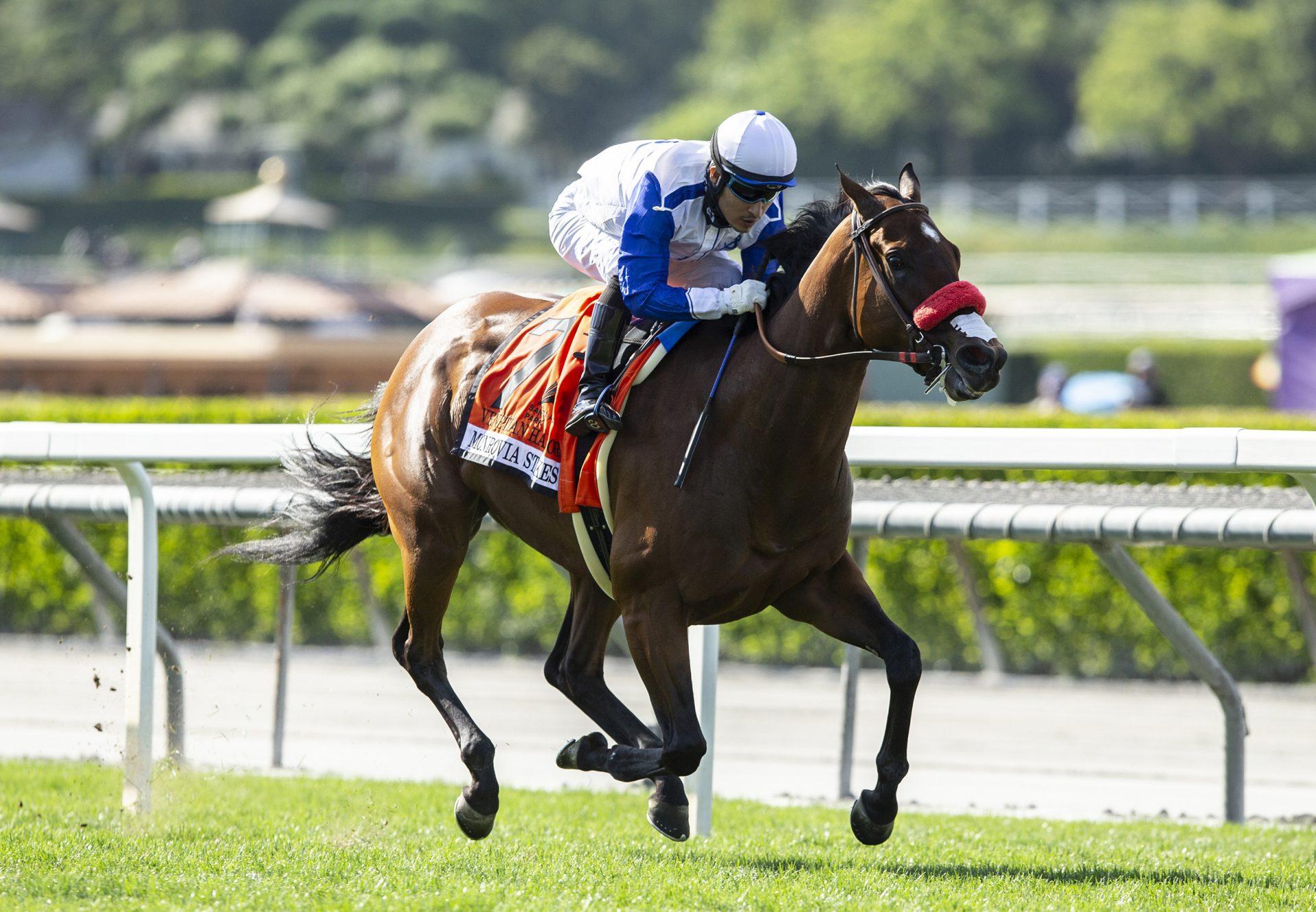 Venetian Harbor (Munnings) Wins Gr.2 Monrovia Stakes at Santa Anita