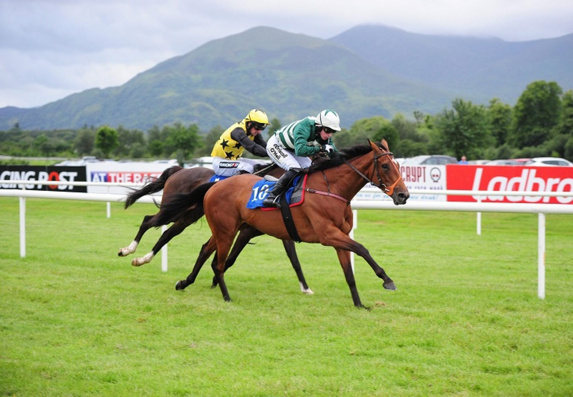Verdana Blue (Getaway) winning a bumper at Killarney