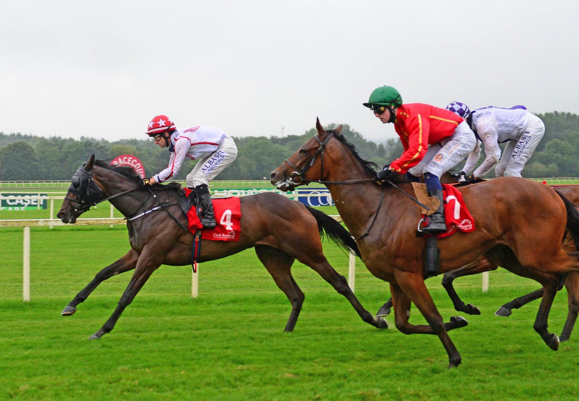 Formality (Fastnet Rock) winning the Gr.2 Silver Shadow Stakes