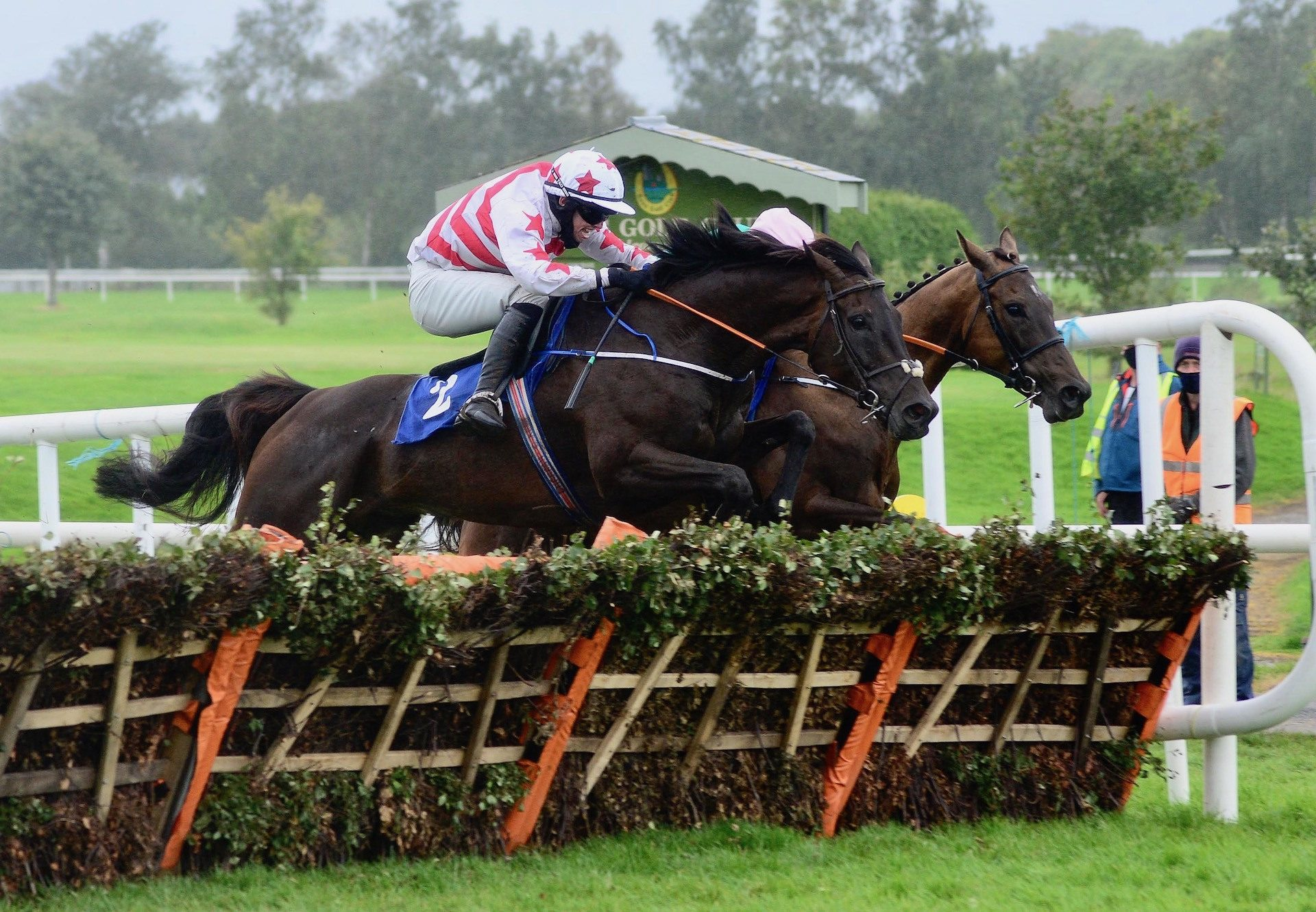 West Cork Wildway (Yeats) Wins The Maiden Hurdle At Killarney