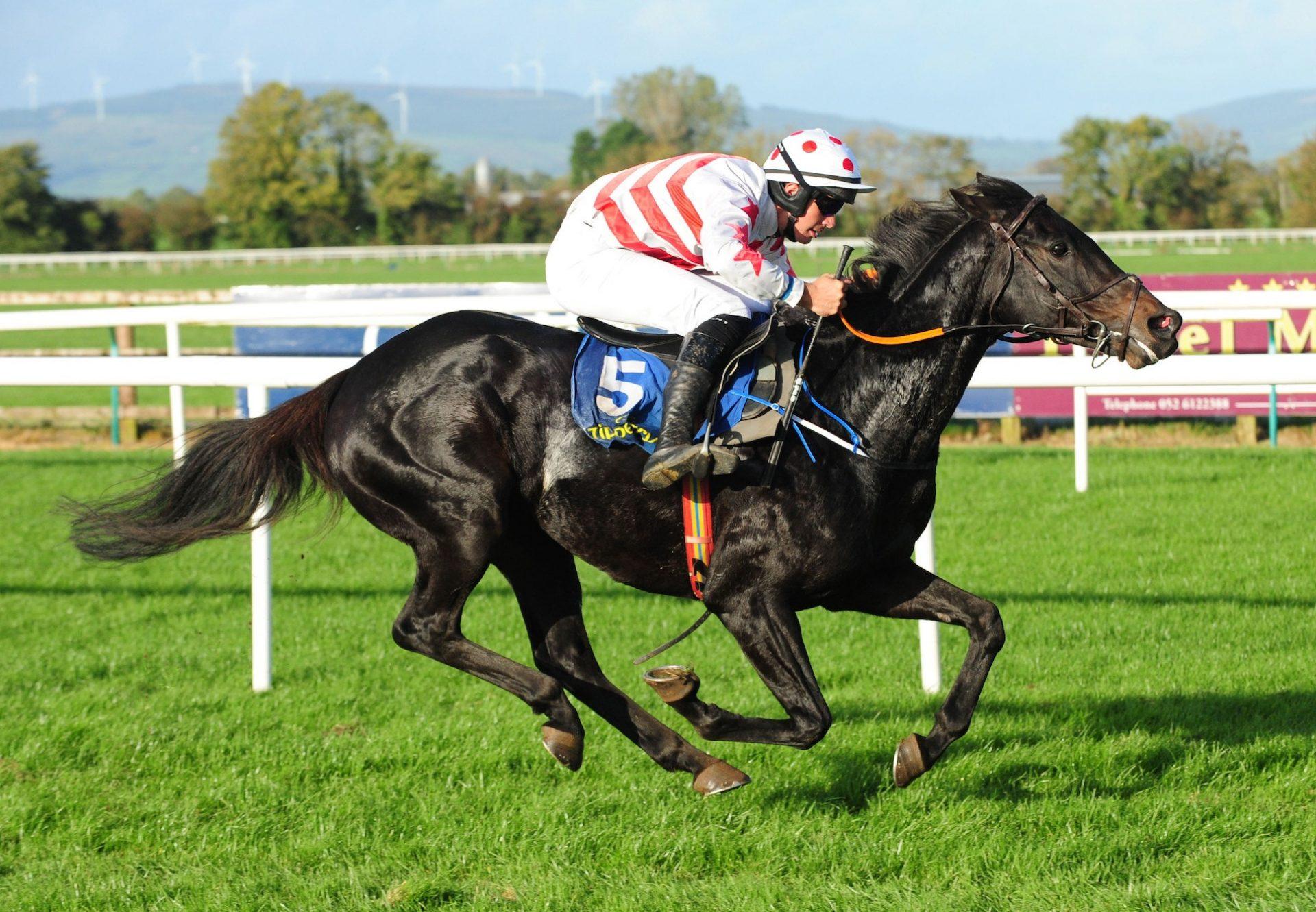 Seventh Heaven (Galileo) winning the G1 Irish Oaks at the Curragh